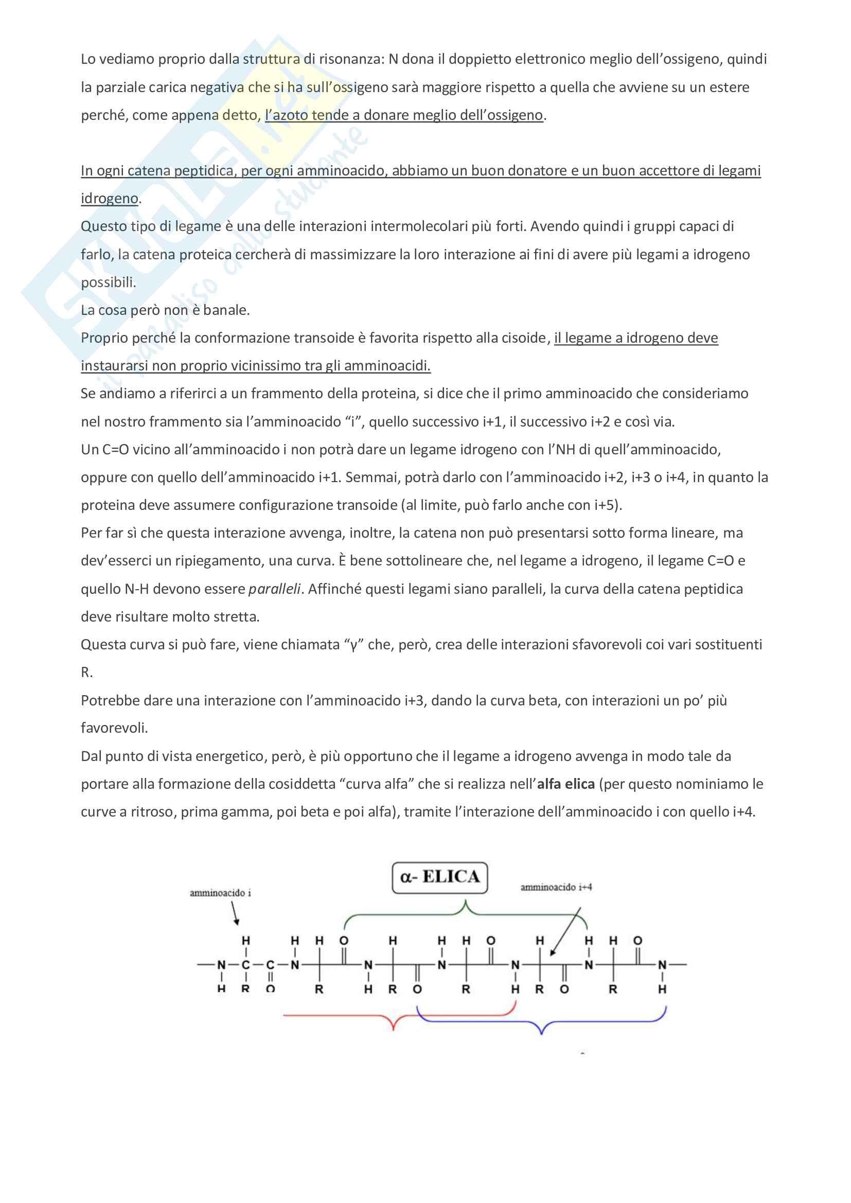 Appunti di bioorganica Pag. 26
