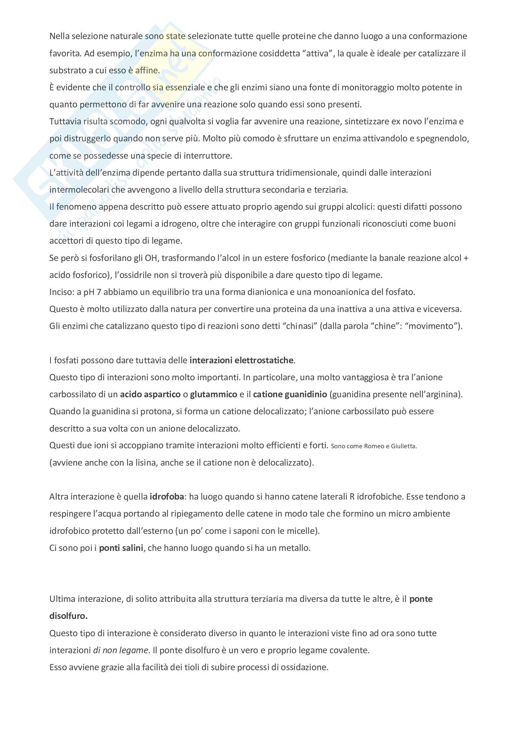 Appunti di bioorganica Pag. 36