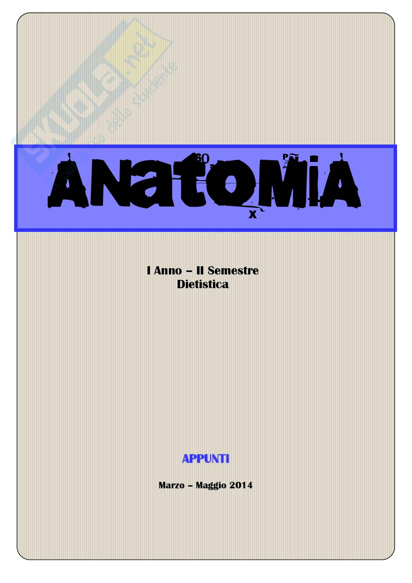 Anatomia umana, Appunti, Prof.ssa Ferretti