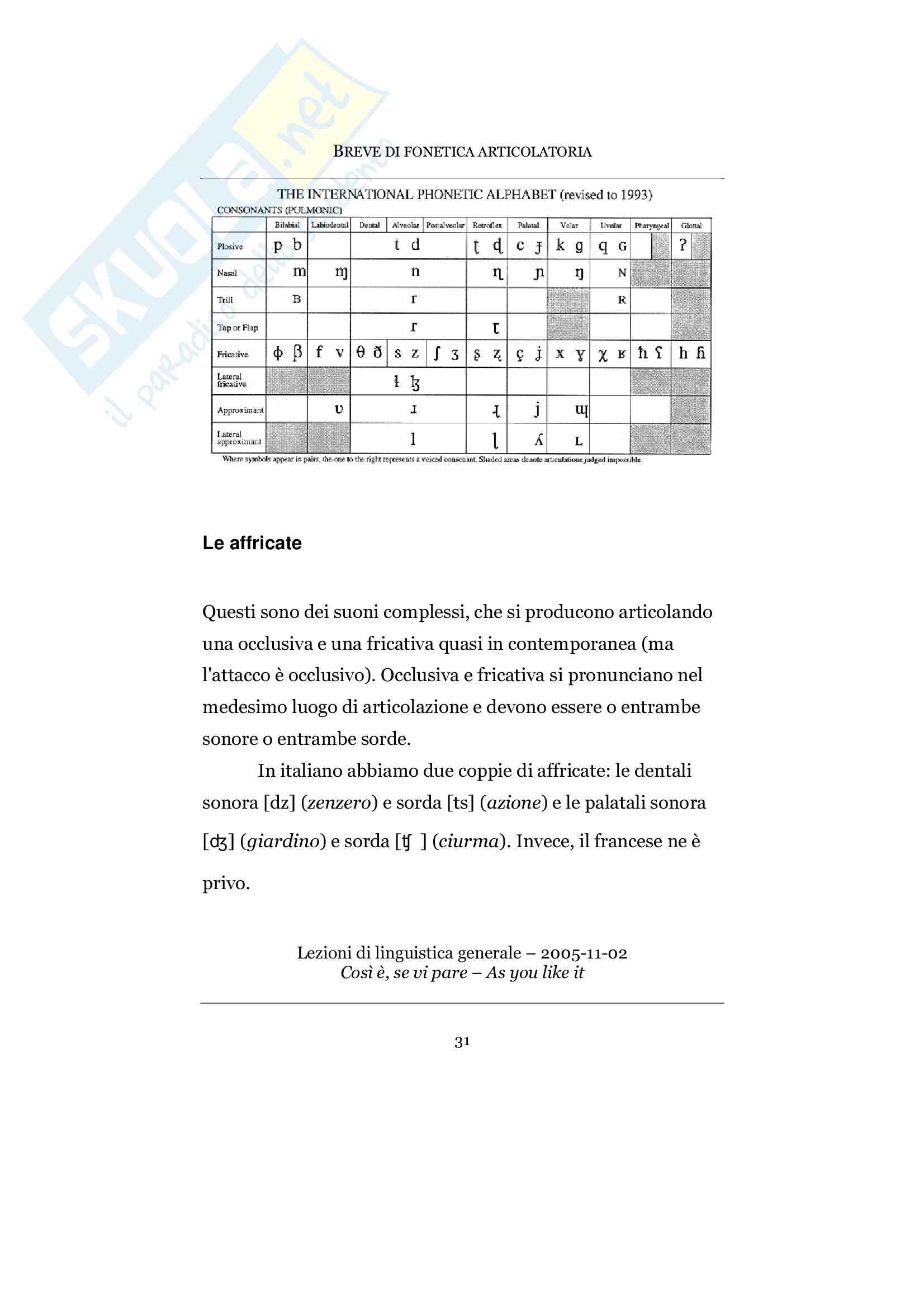 Nozioni di fonetica e fonologia Pag. 31