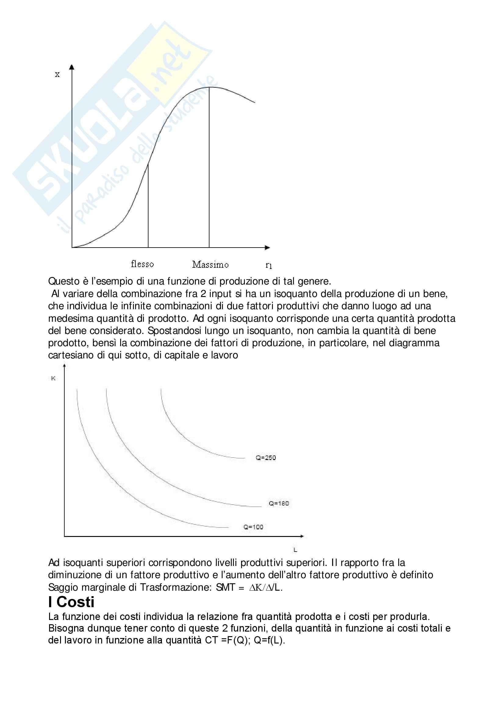 Economia politica - l'impresa Pag. 2