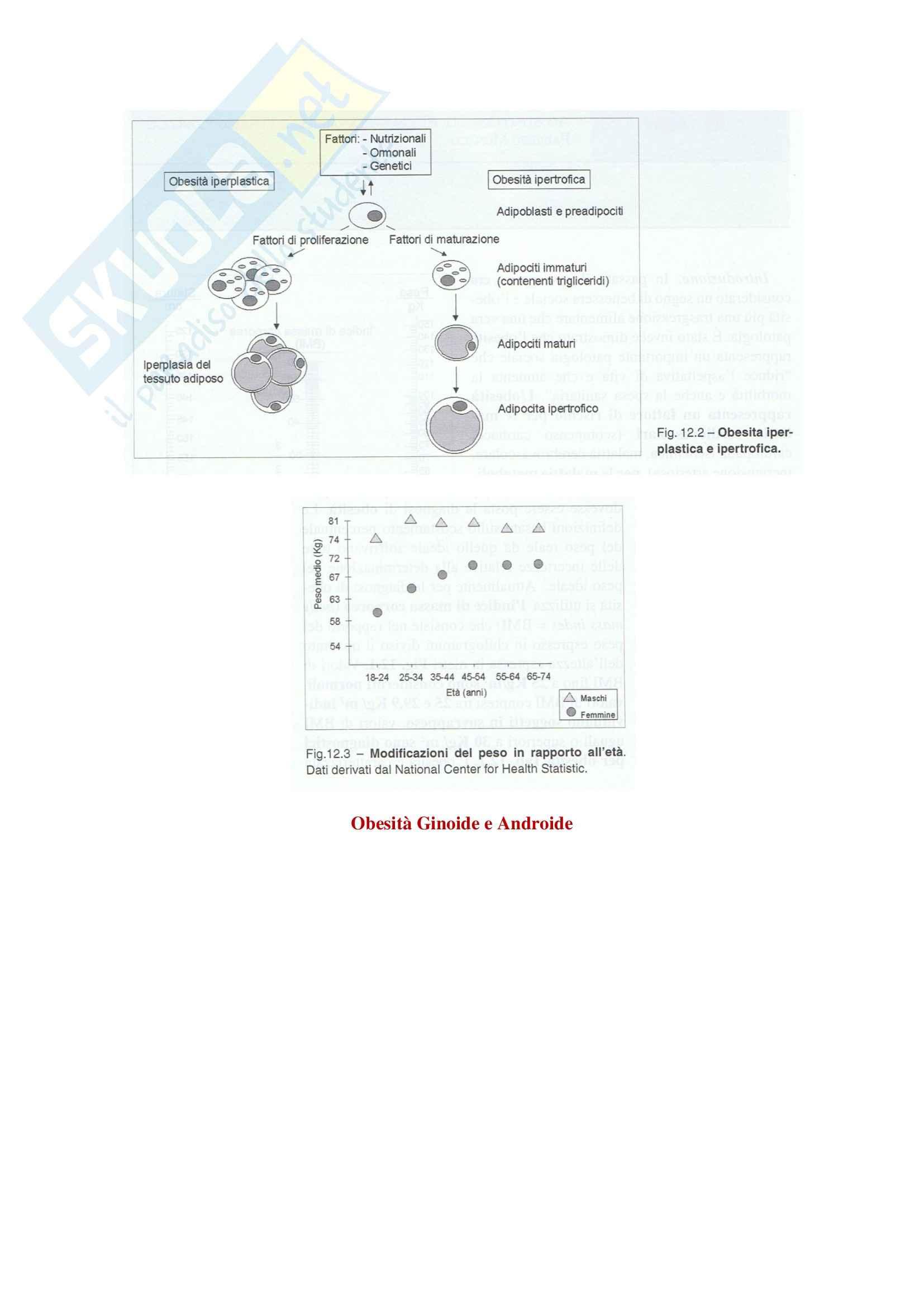 Endocrinologia - obesità Pag. 2