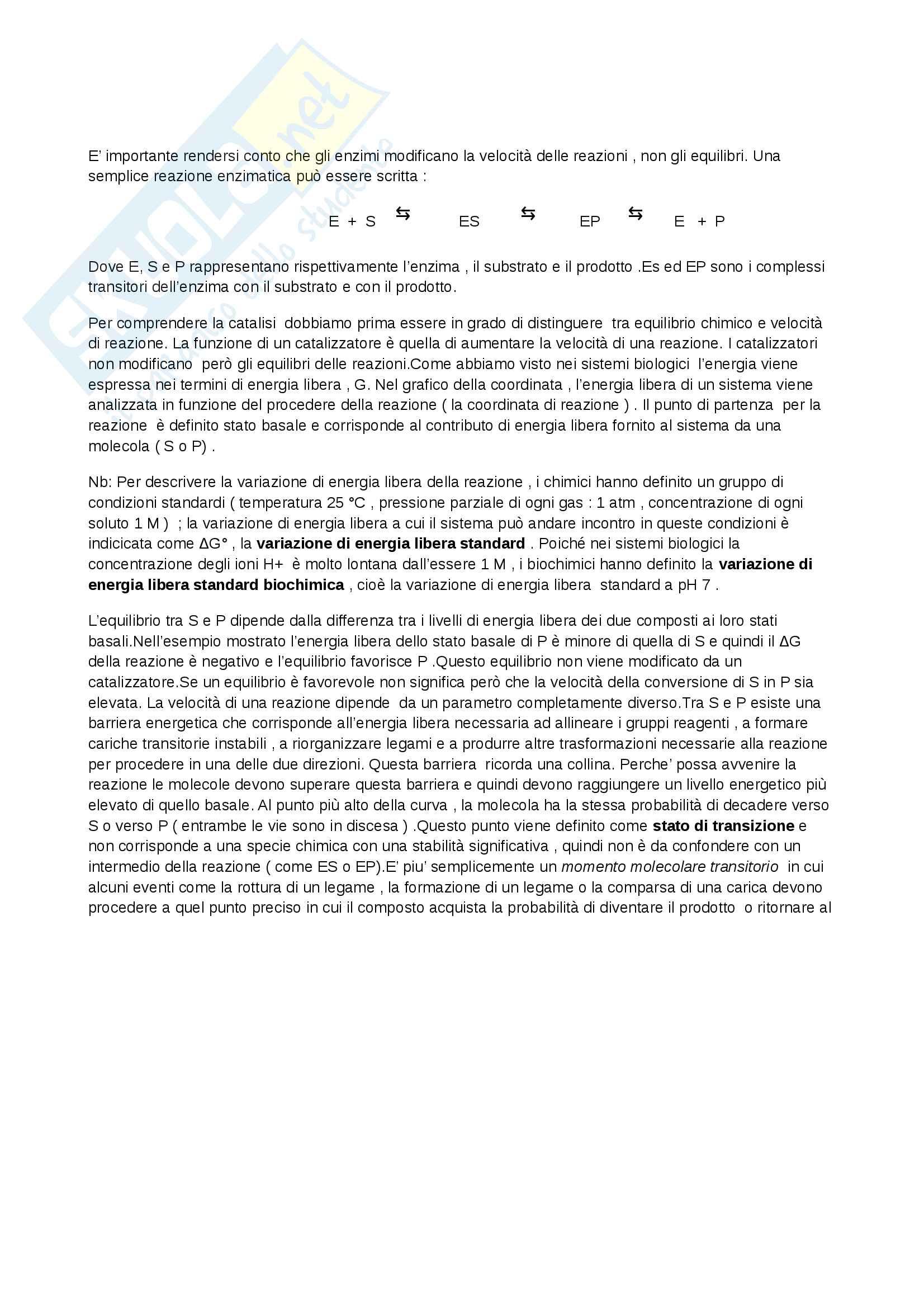 Riassunto esame Biochimica, prof. Marcocci, libro consigliato Principi di biochimica, Lehninger Pag. 2