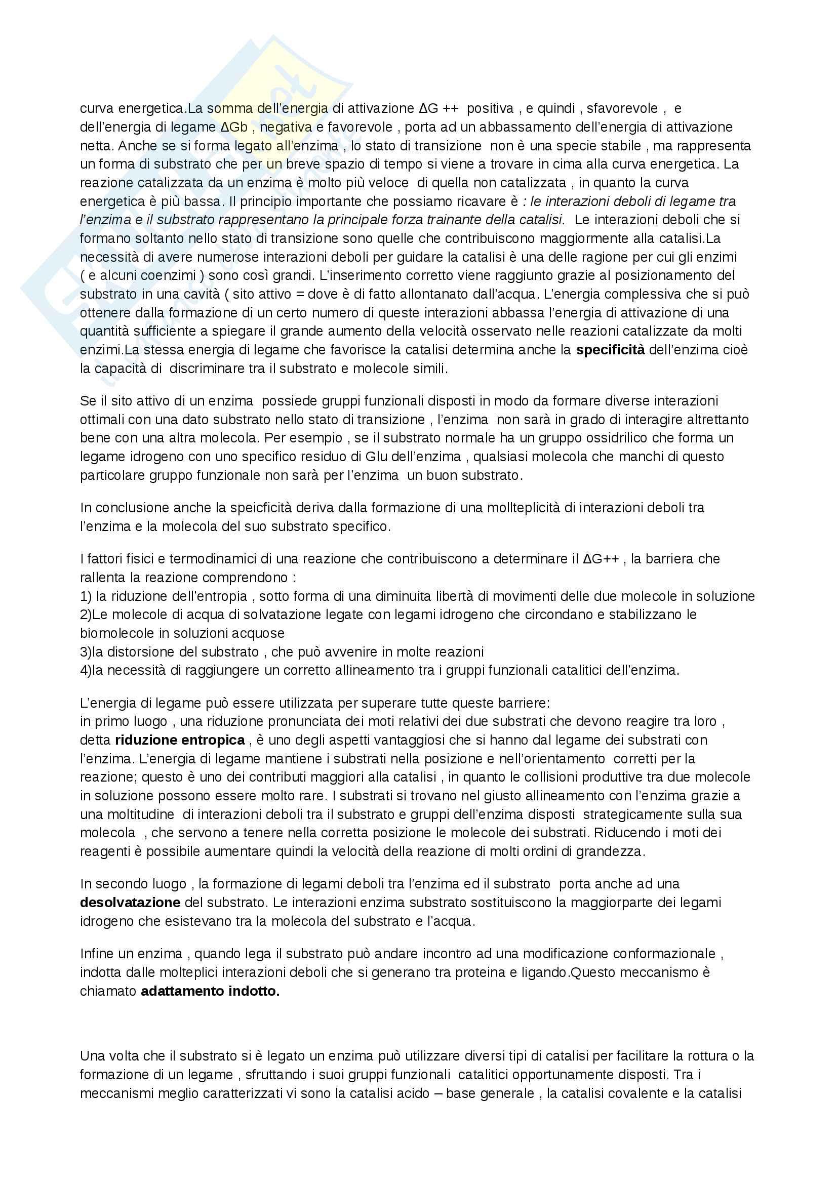 Riassunto esame Biochimica, prof. Marcocci, libro consigliato Principi di biochimica, Lehninger Pag. 6