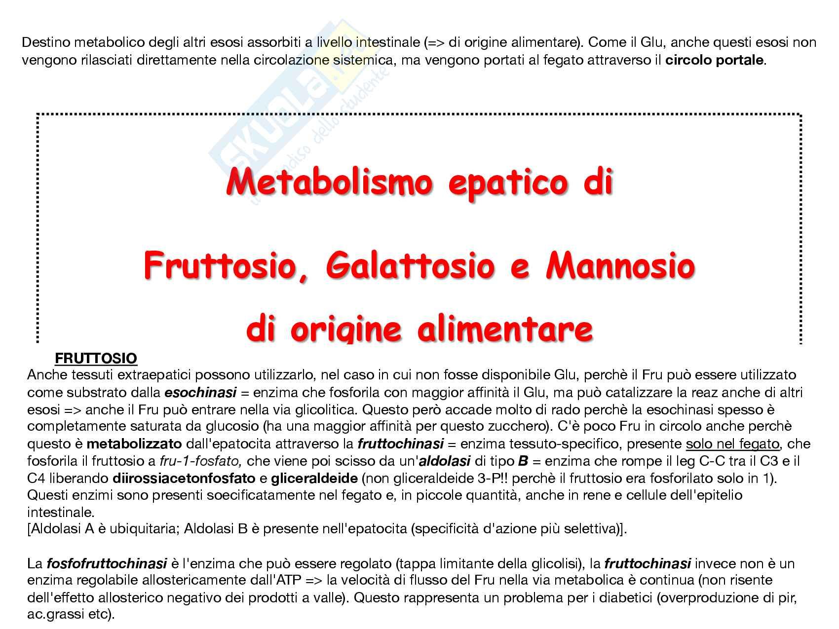 4 Metabolismo epatico, Fruttosio, Galattosio e Mannosio