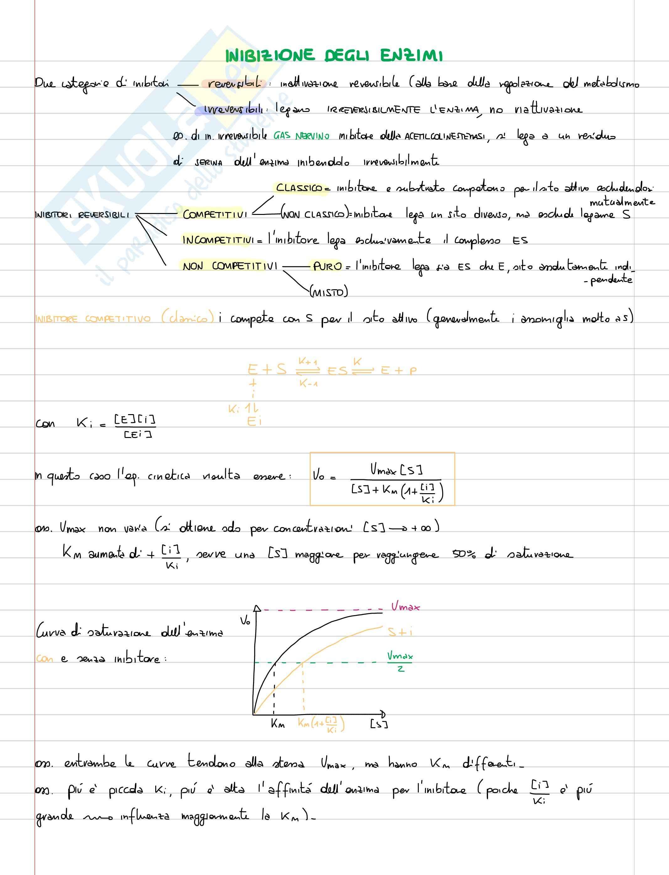 Lezioni, Biochimica Pag. 41