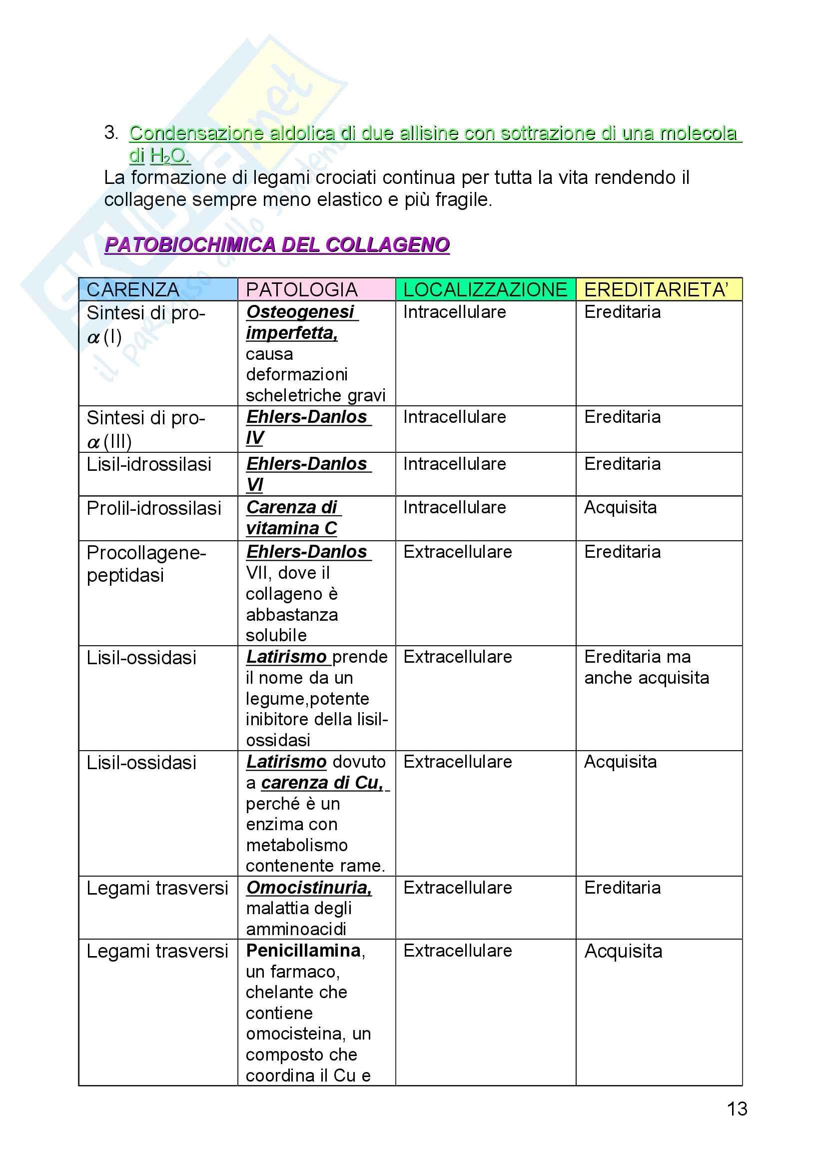 Biochimica I – Proteine Pag. 11