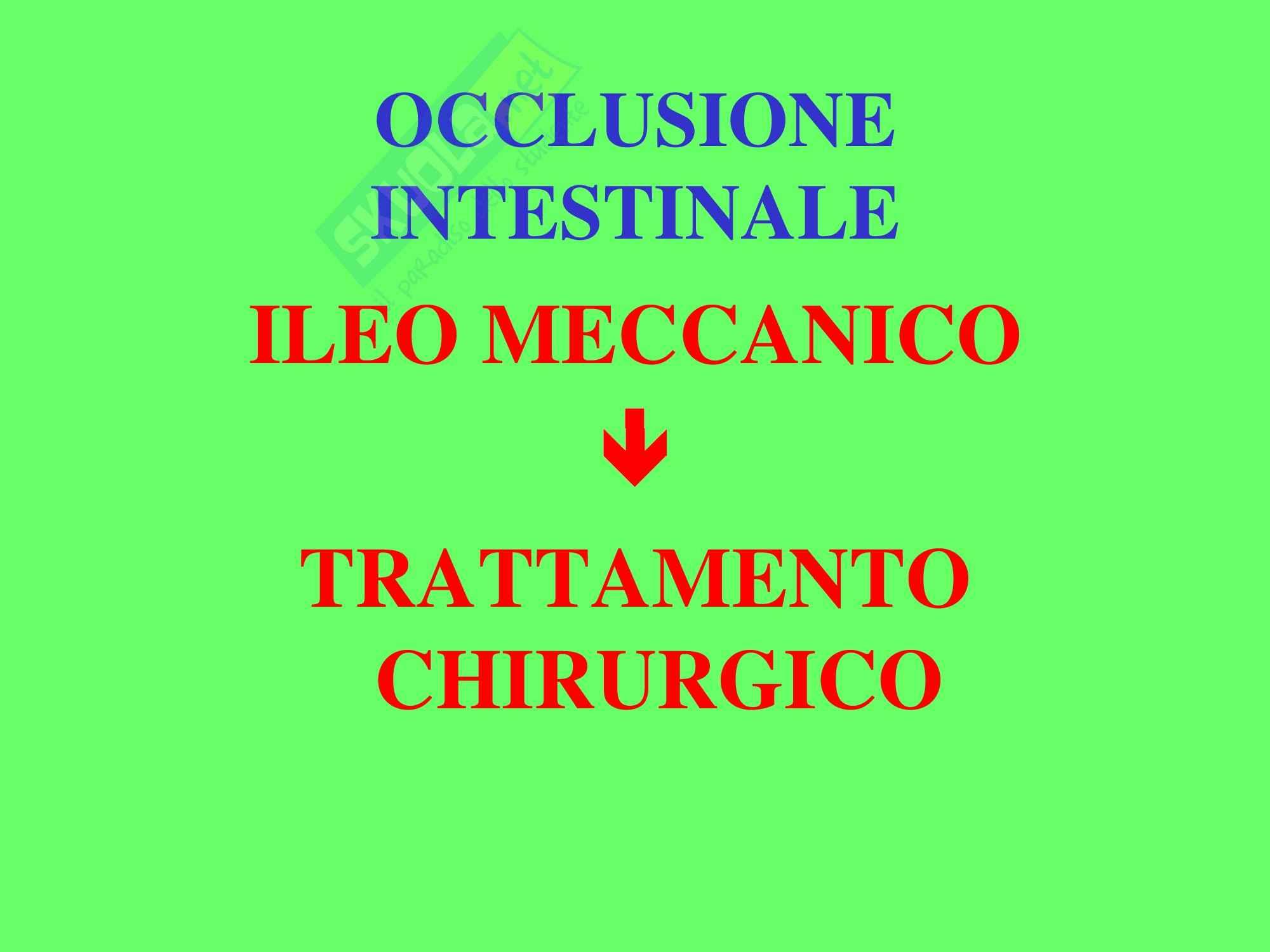 Chirurgia Geriatrica - Occlusione Intestinale Pag. 16