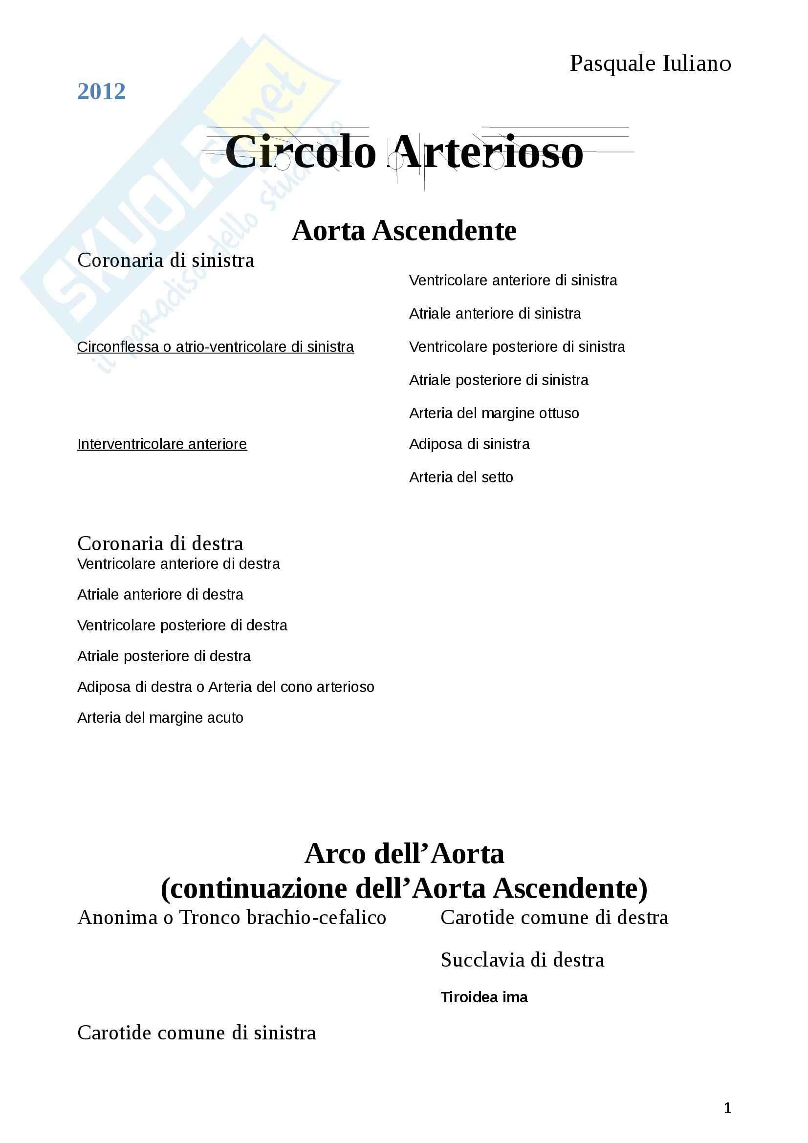 Anatomia umana - sistema circolatorio arterioso