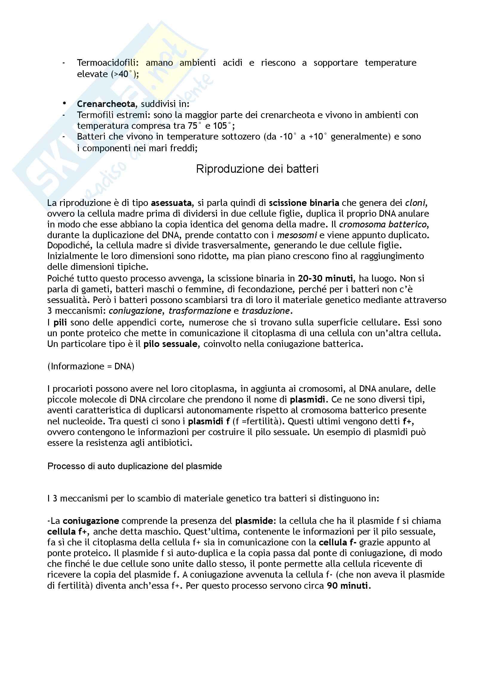Biologia  animale e vegetale Pag. 11