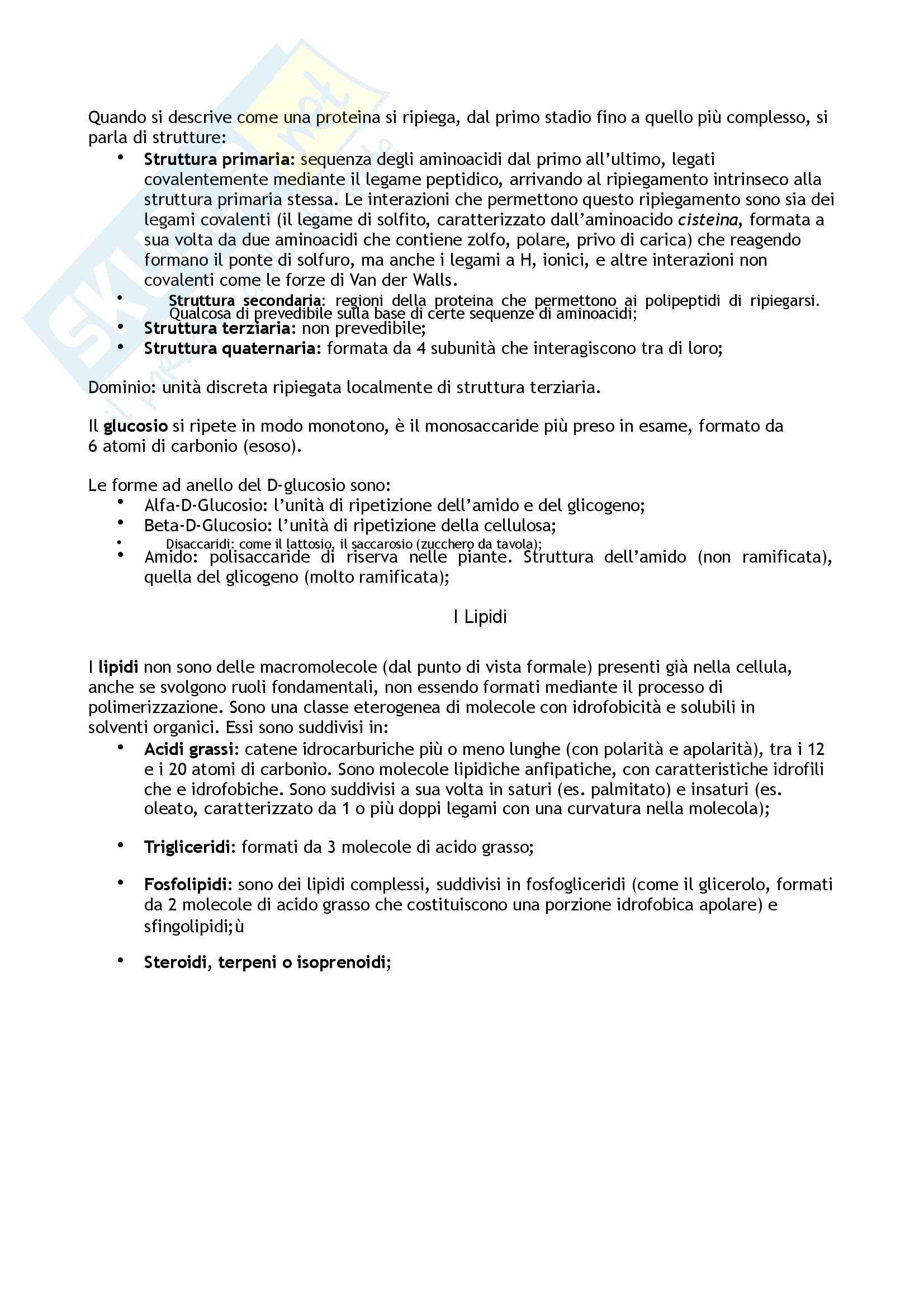 Biologia  animale e vegetale Pag. 6