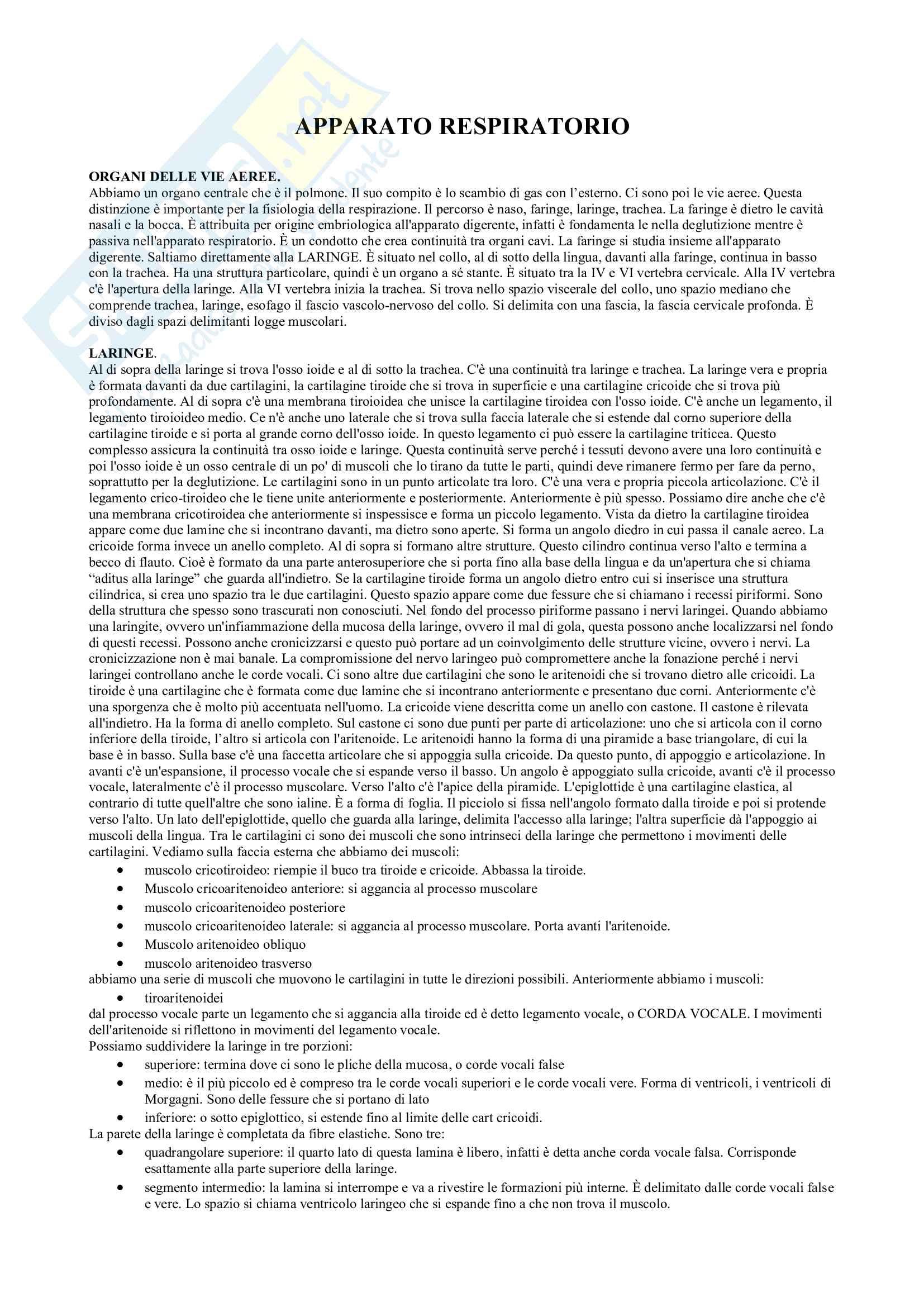 Apparato respiratorio, Appunti Pag. 1