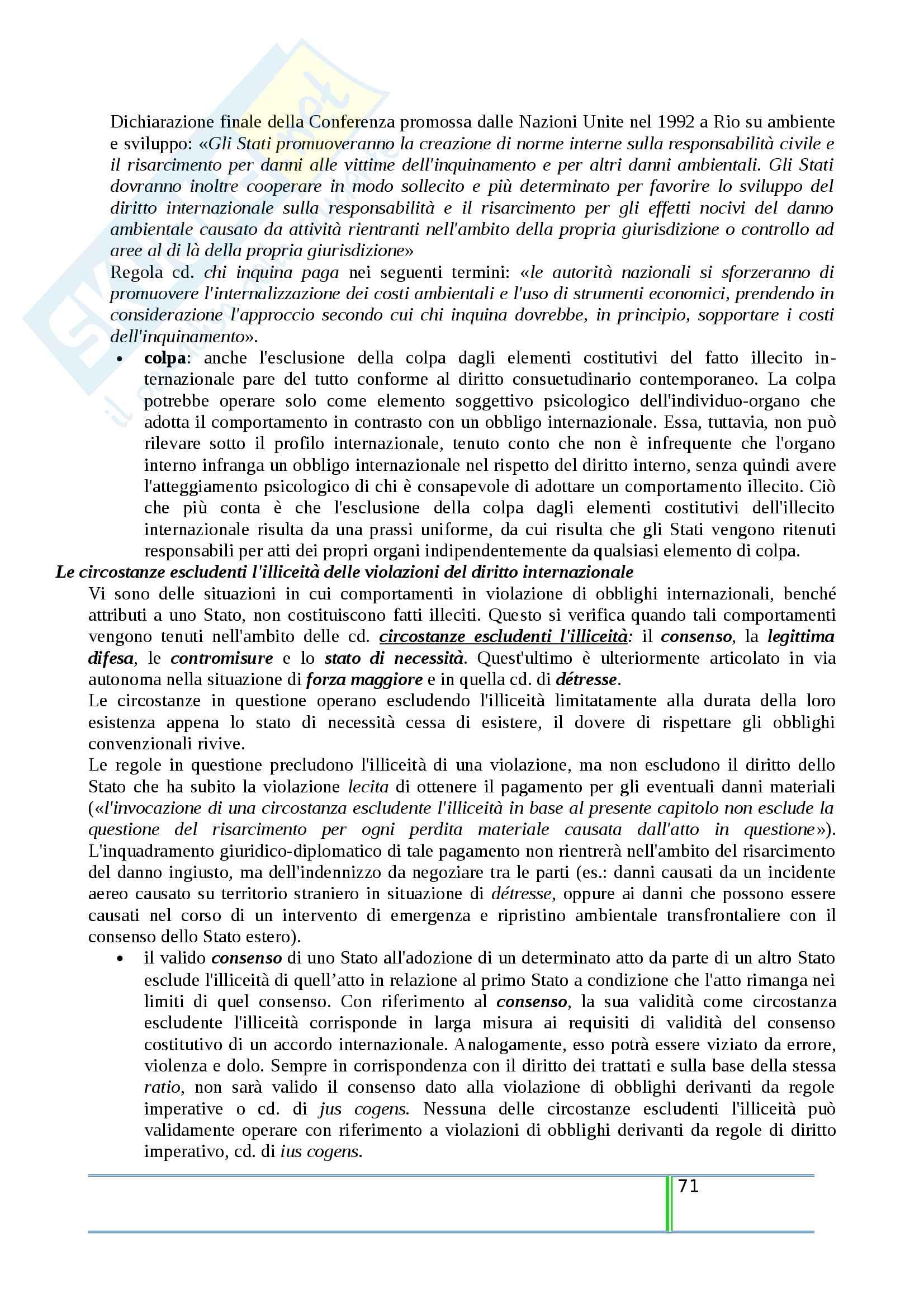Riassunto esame Diritto Internazionale, prof. Tanzi, libro consigliato Introduzione al Diritto Internazionale Contemporaneo, Tanzi Pag. 71