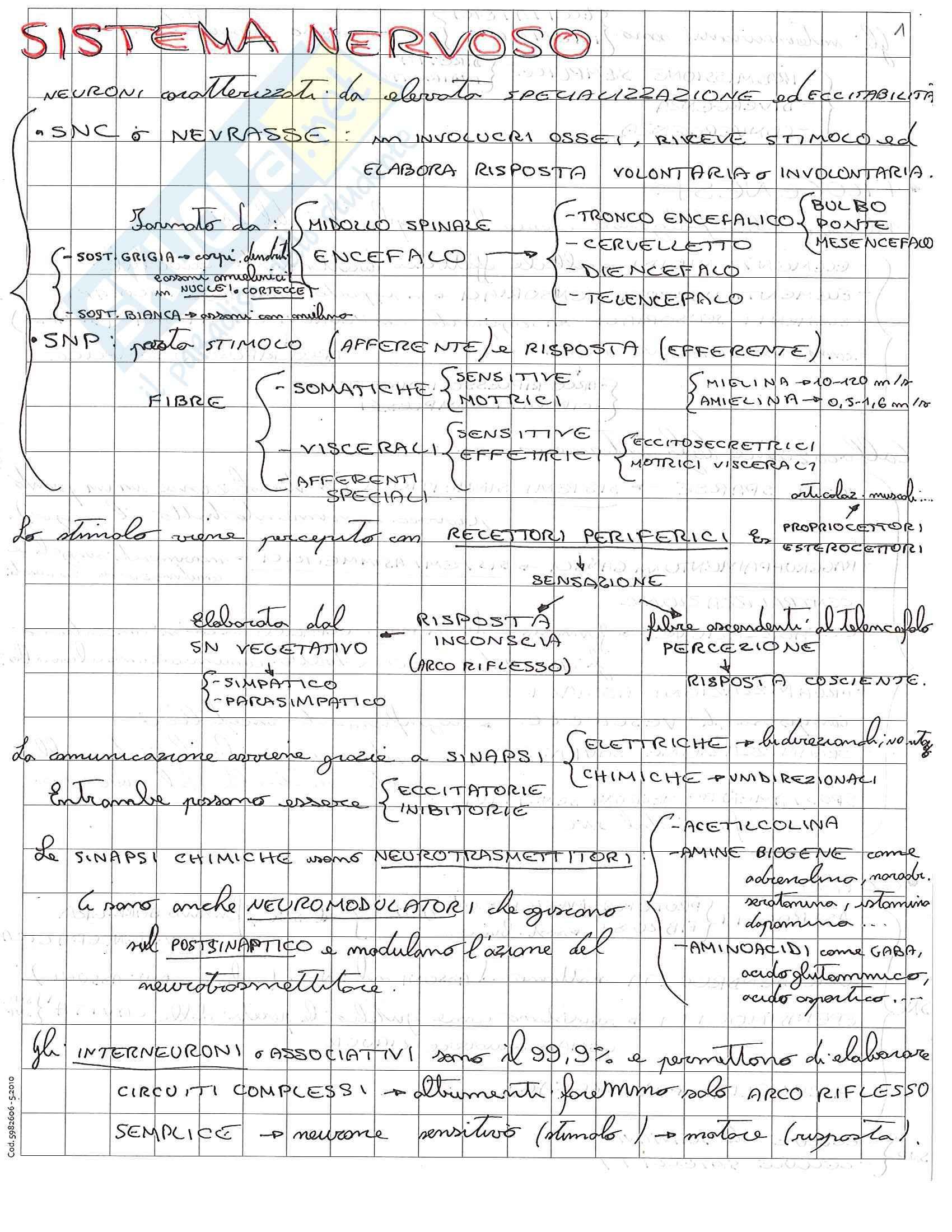 appunto C. Sforza Anatomia umana
