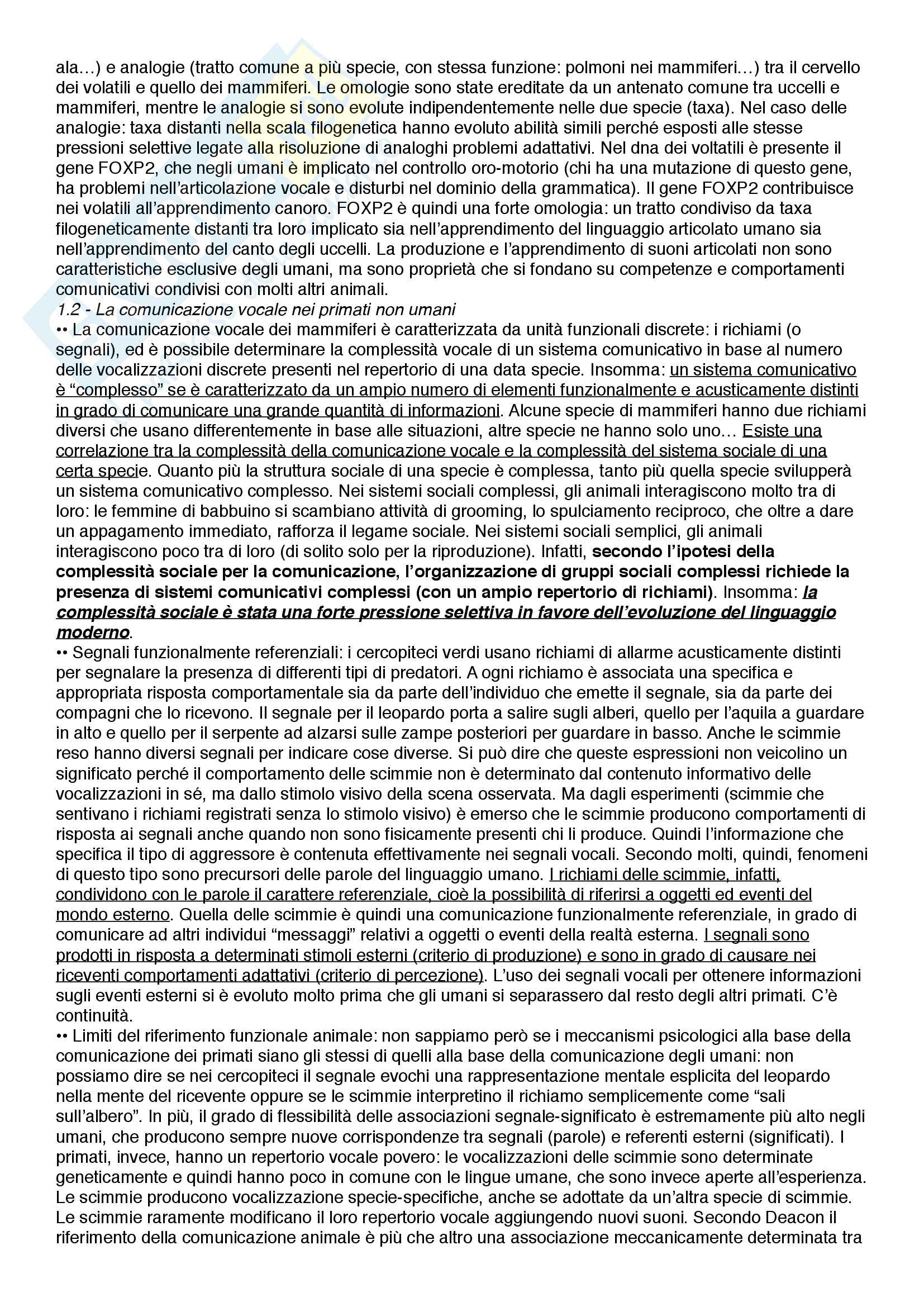 Riassunto esame Filosofia del linguaggio e della comunicazione, prof. Ferretti, libro consigliato Il linguaggio - origine ed evoluzione, Ines Adornetti Pag. 2