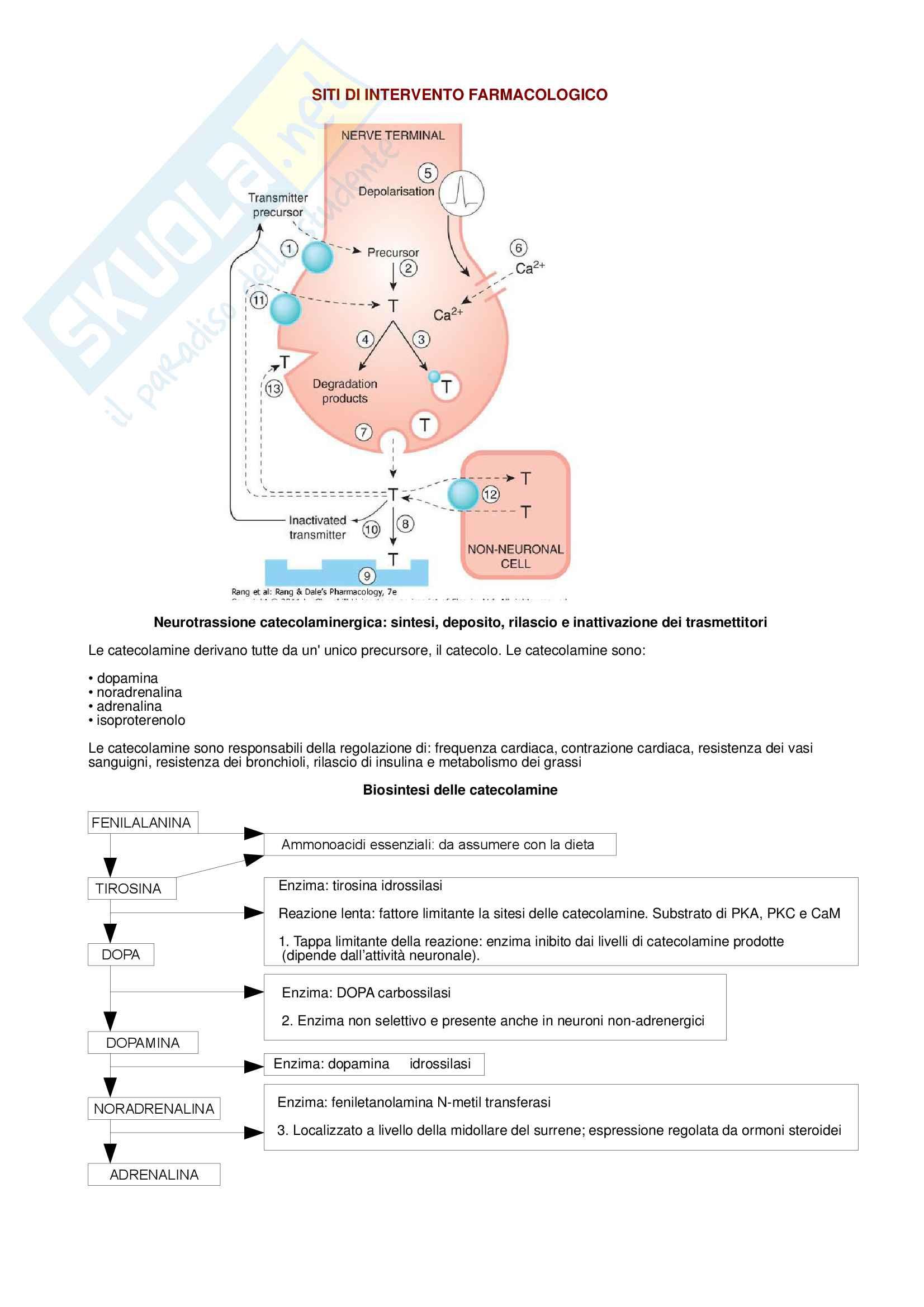 Farmacologia - Siti di intervento farmacologico BIO/14