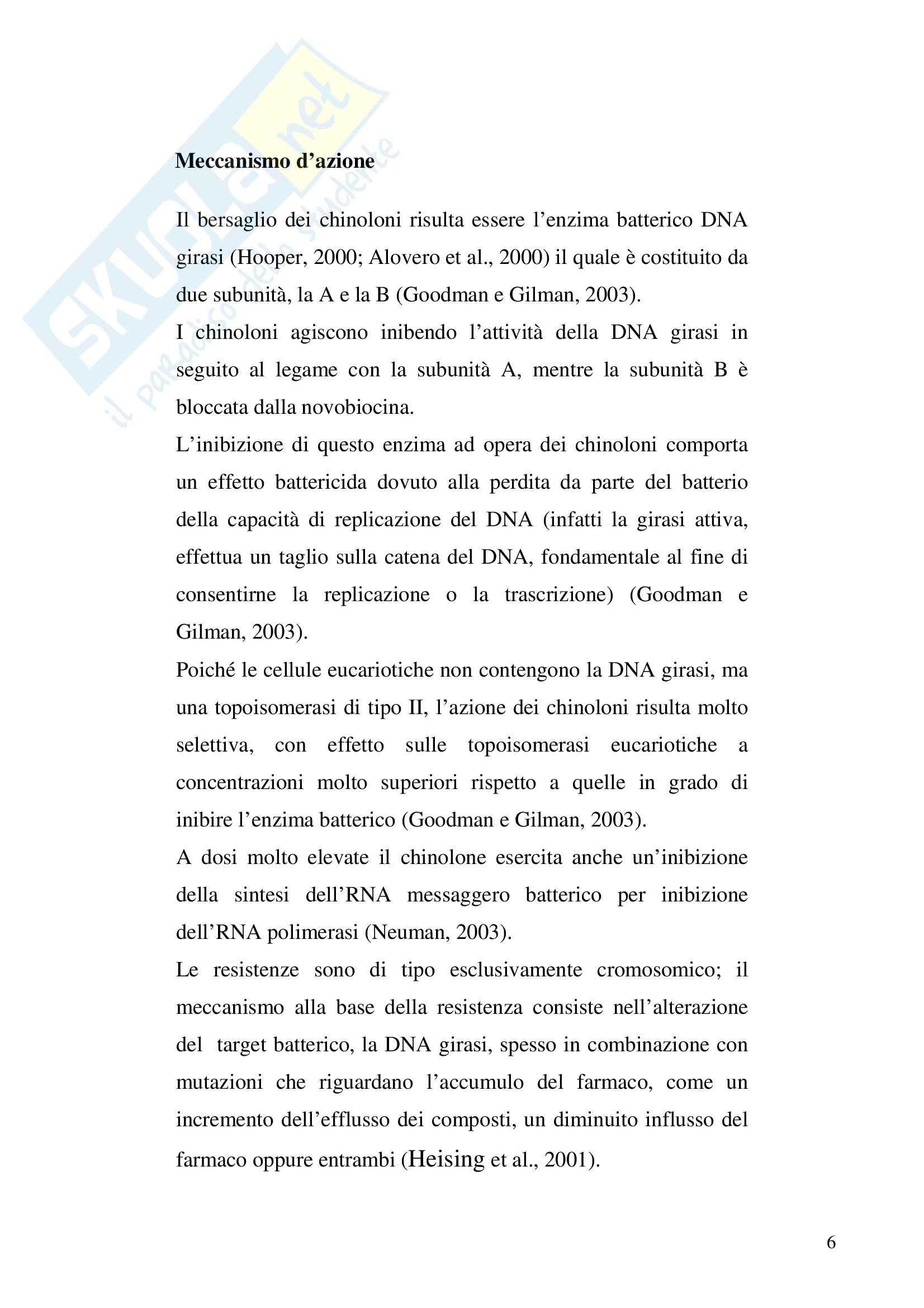 Chimica farmaceutica -  chinoloni Pag. 6