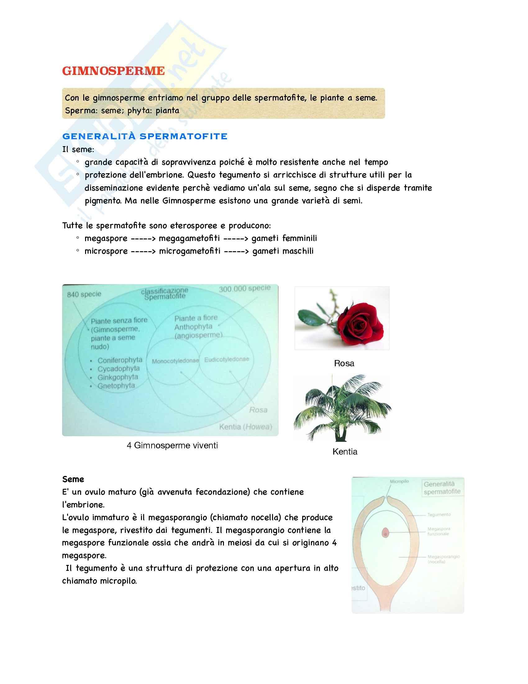 Botanica - Appunti parte 2