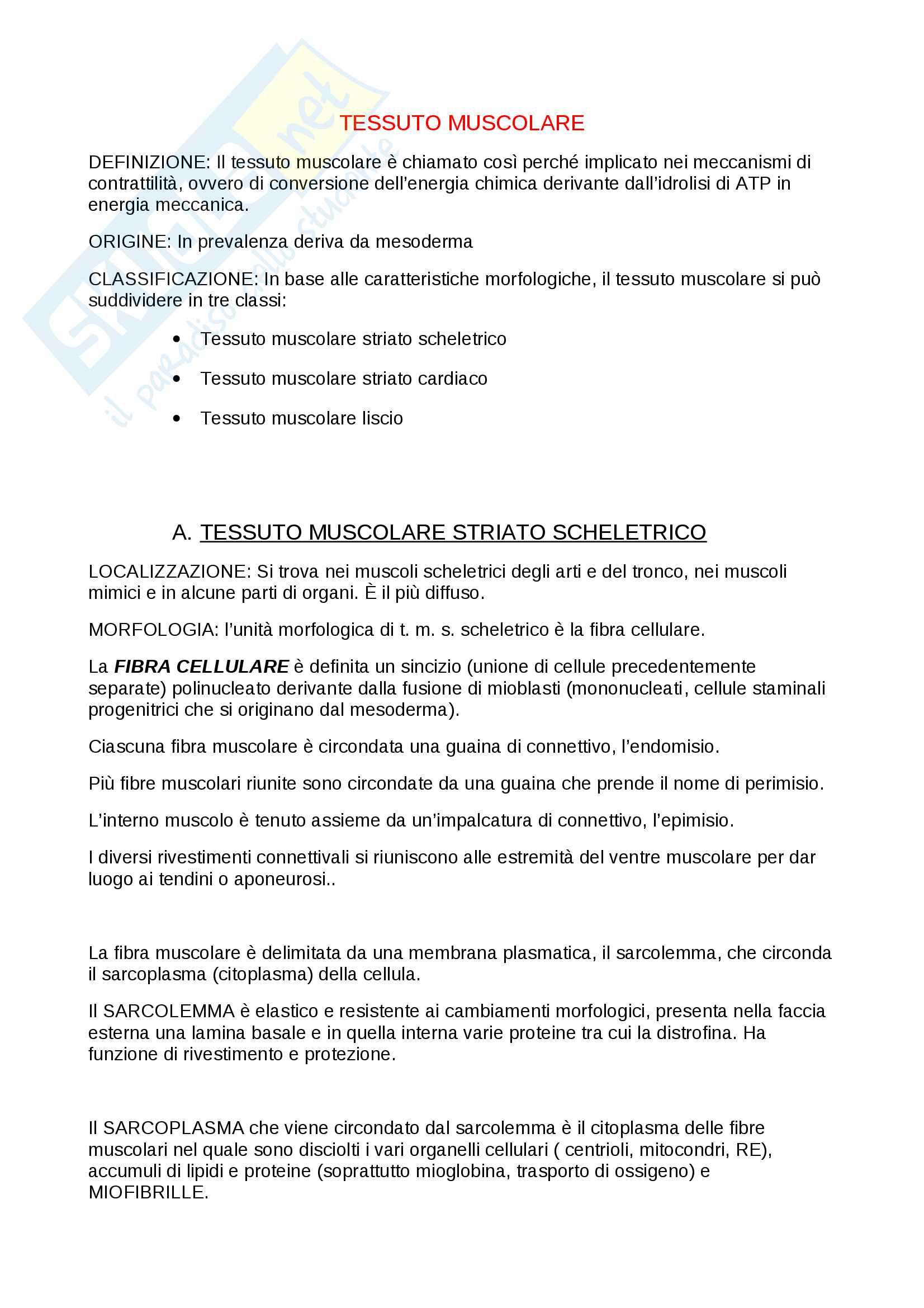 Riassunto esame istologia, prof. A. Fagotti. Libro consigliato Biologia dei tessuti, Olmo, Colombo