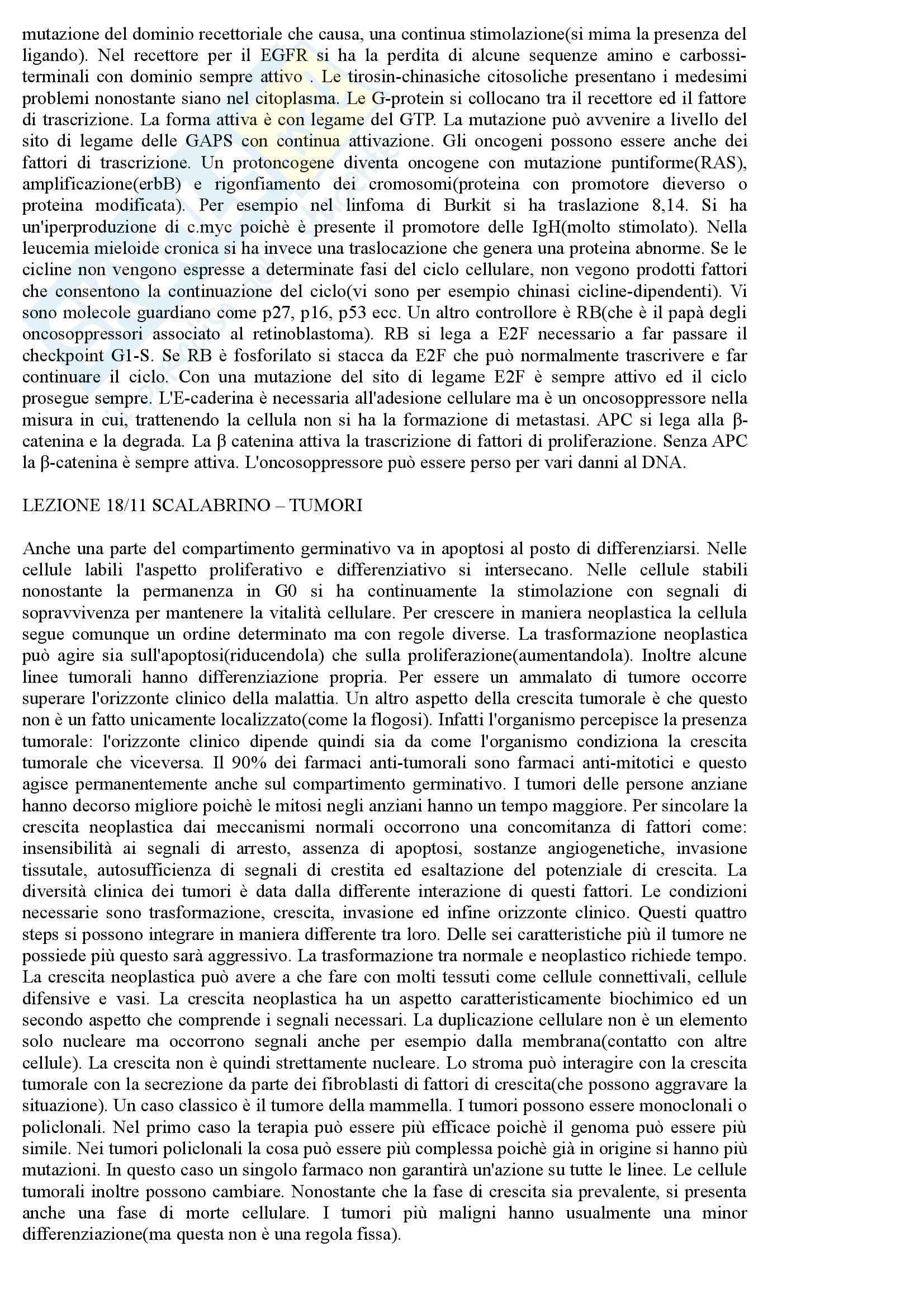 Patologia Generale - Appunti Pag. 31