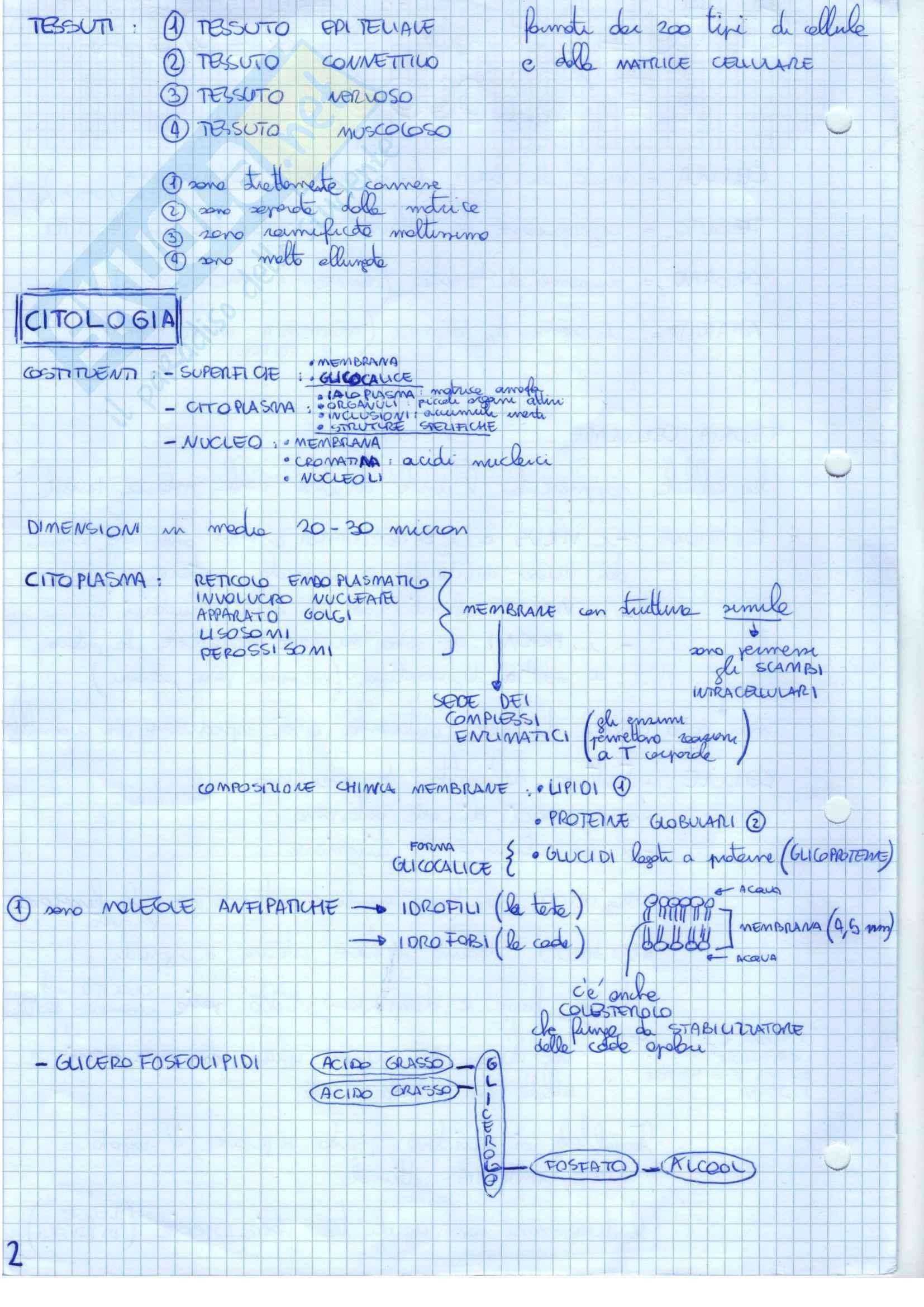 Lezioni, Citologia Pag. 2