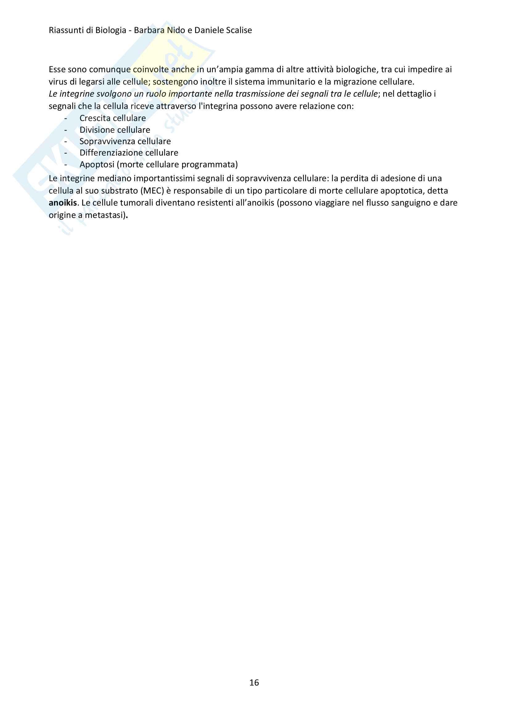 Riassunto Biologia Pag. 16