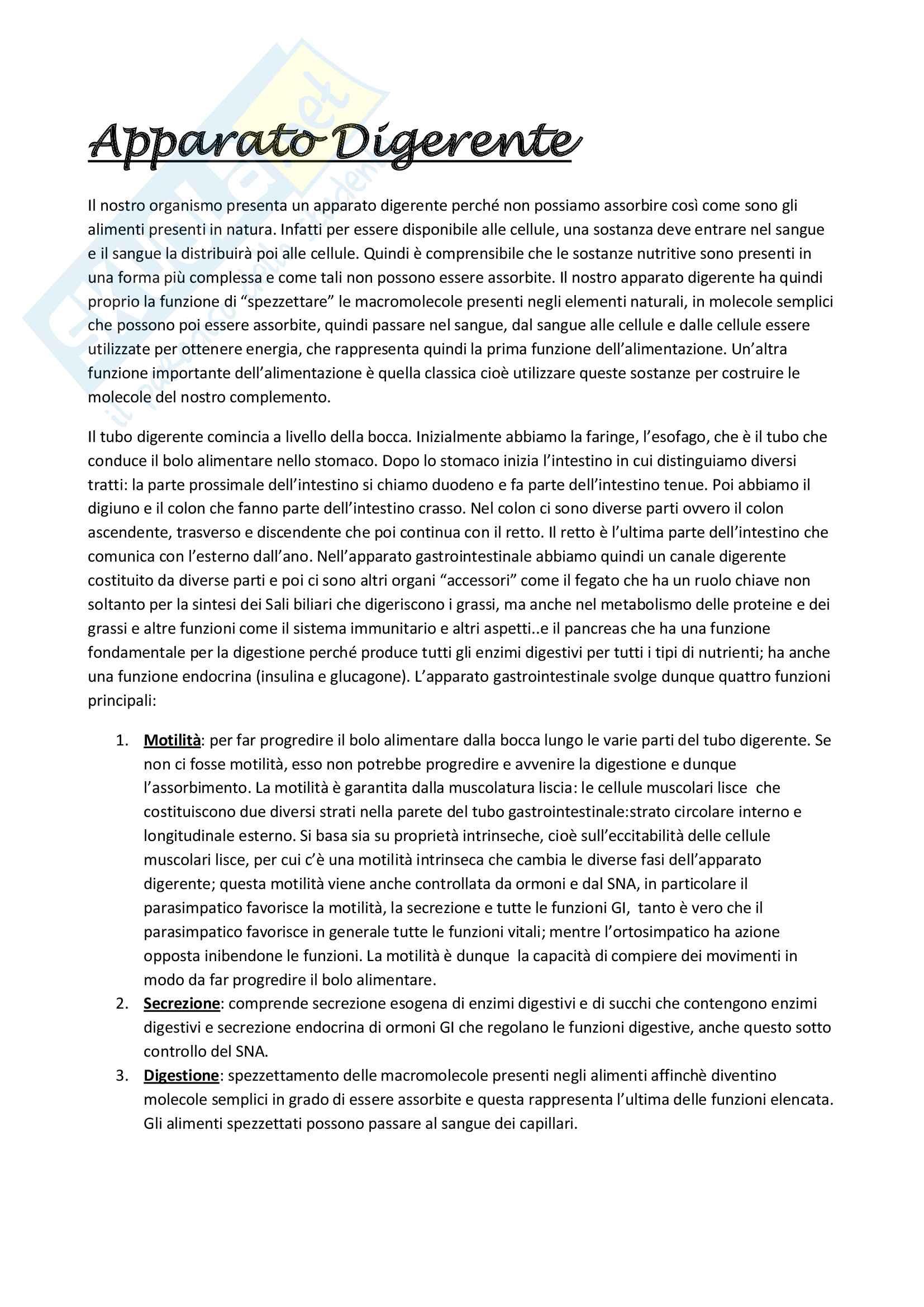 Appunti Digerente - Fisiologia