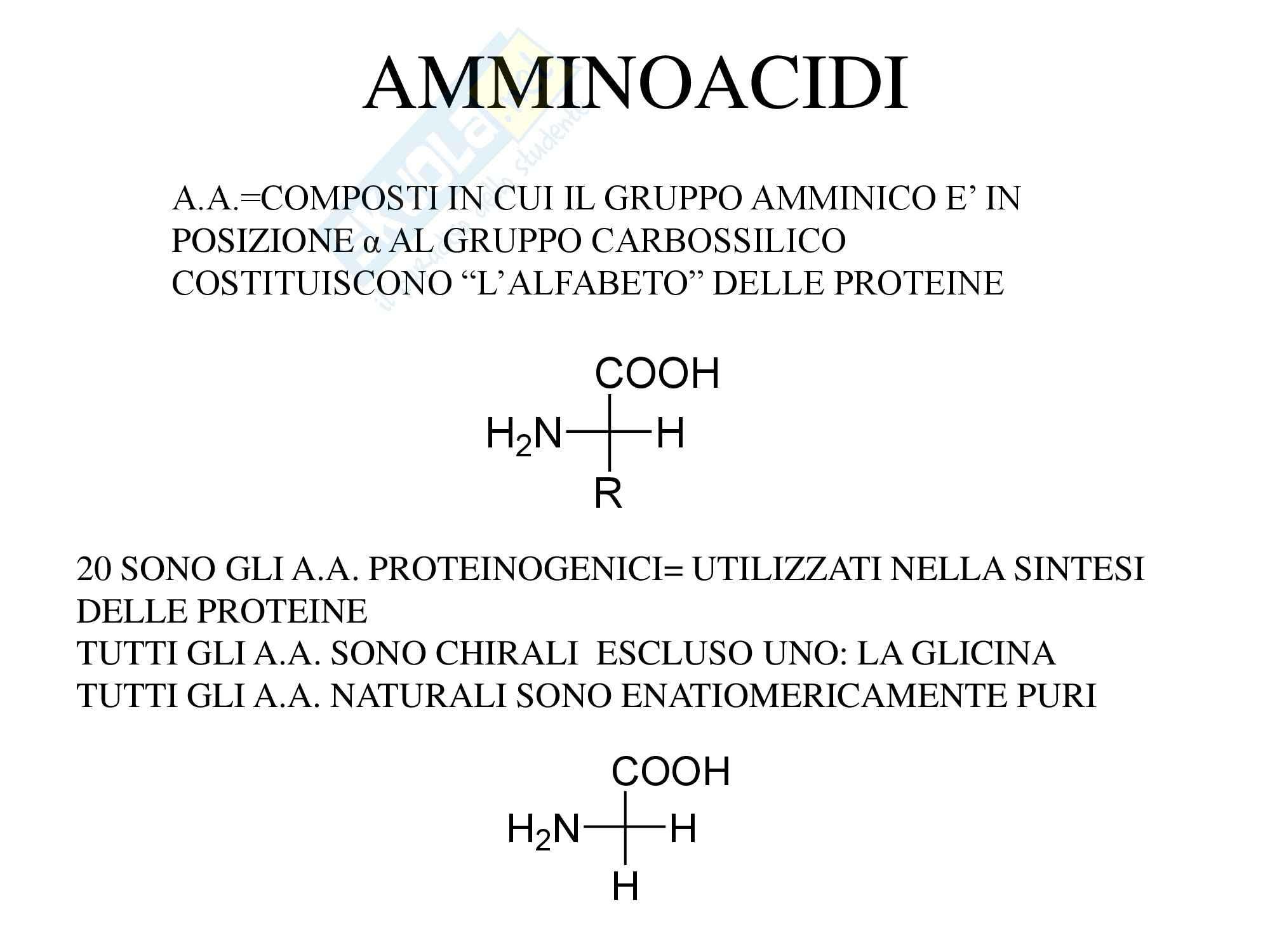 Chimica organica - amminoacidi