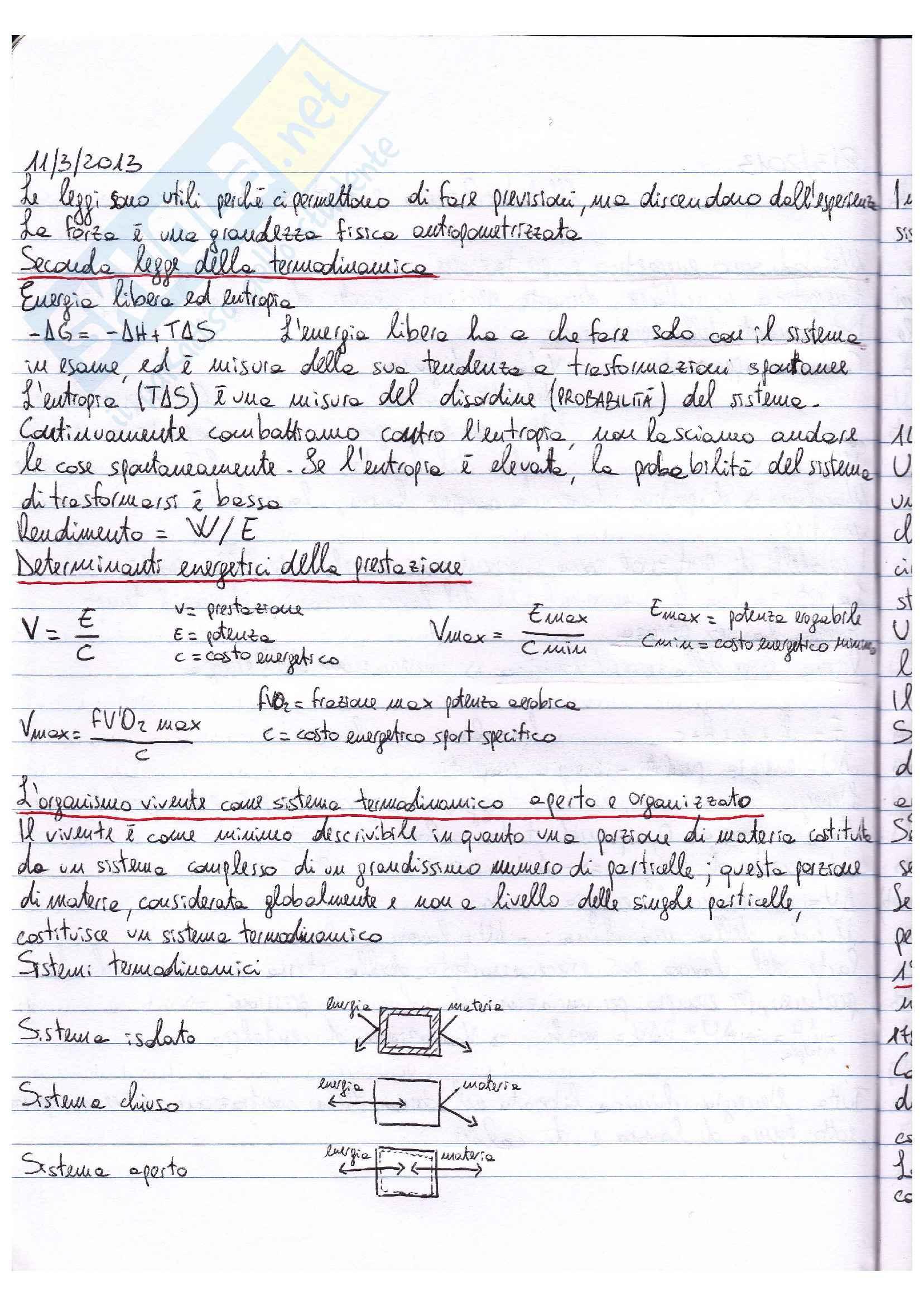 Riassunto esame Fisiologia, prof. Macaluso, libro Fisiologia, Vander, Costill: parte III Pag. 2