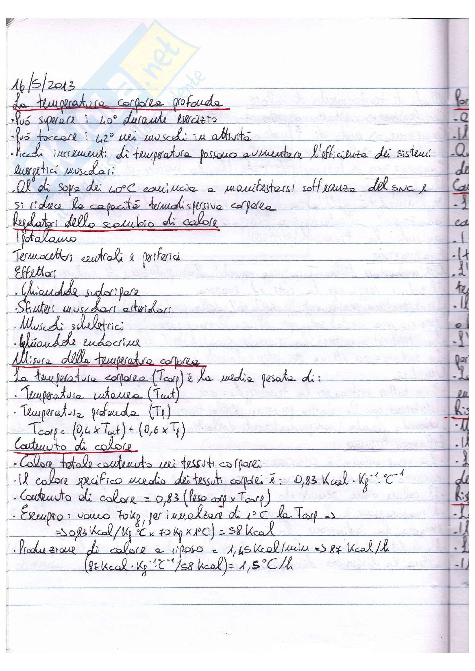 Riassunto esame Fisiologia, prof. Macaluso, libro Fisiologia, Vander, Costill: parte III Pag. 36
