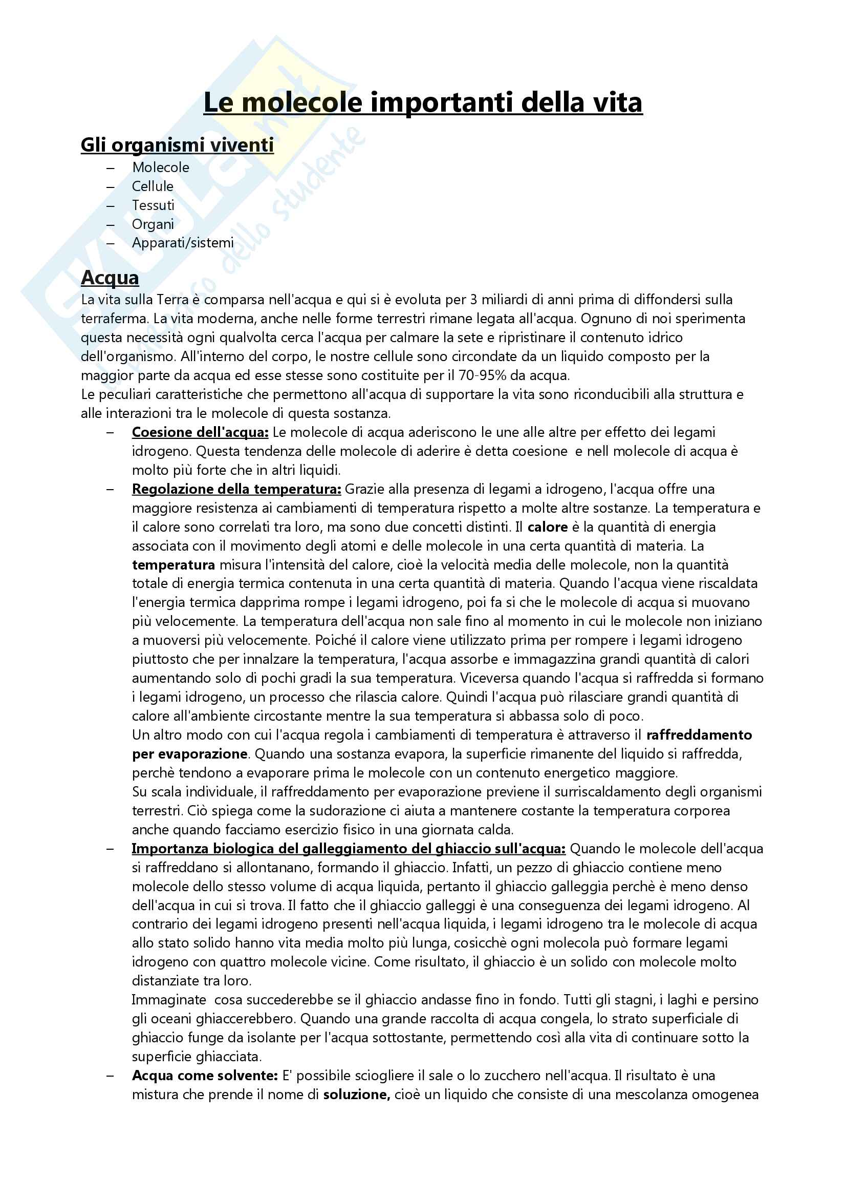 Appunti per l'esame di Fondamenti di Biologia