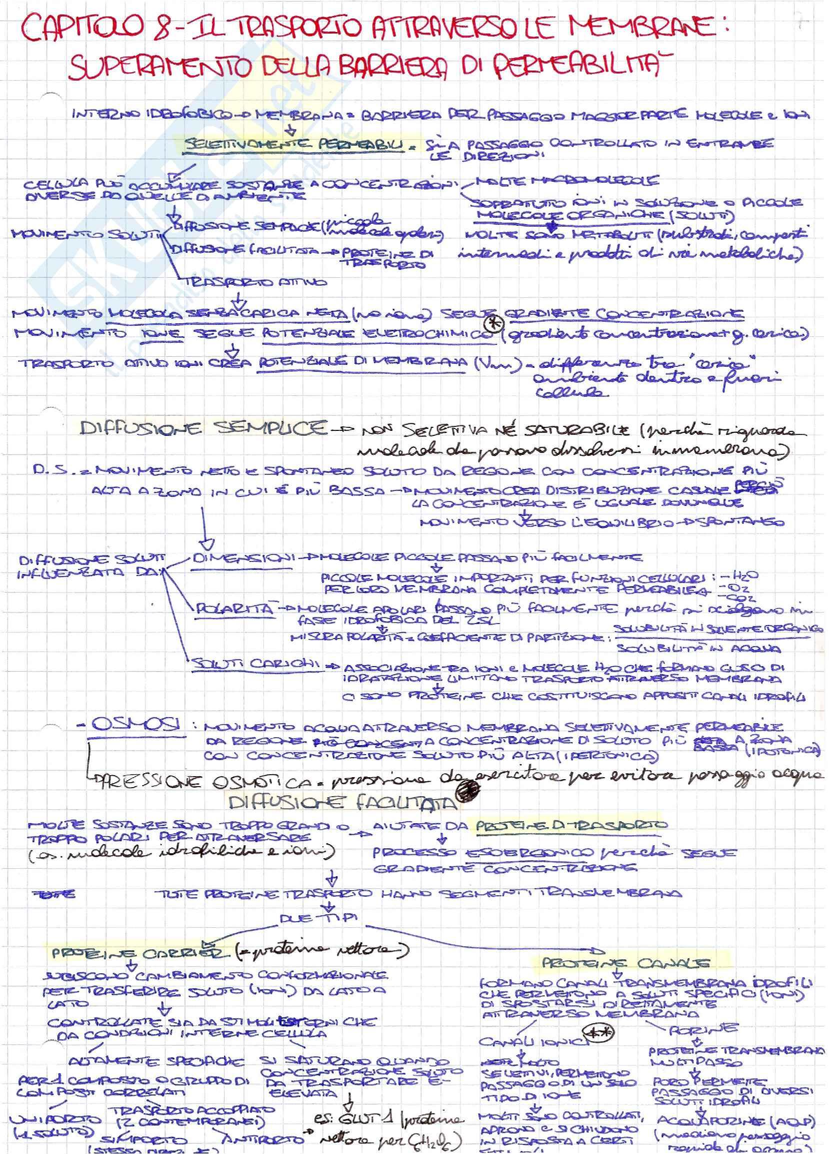 Schemi di biologia generale e cellulare per l'esame della prof. Patrizia Limonta sui meccanismi di trasporto attraverso la membrana cellulare
