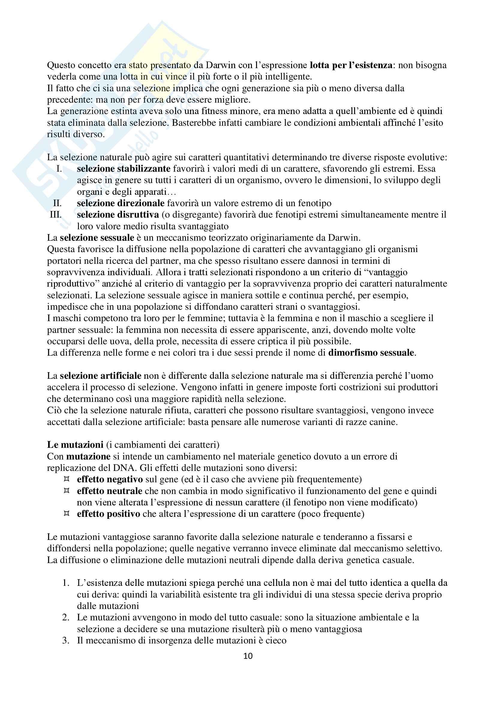 Appunti di Zoologia per l'esame del corso di laurea triennale in Scienze Biologiche (Università Milano Bicocca) Pag. 11