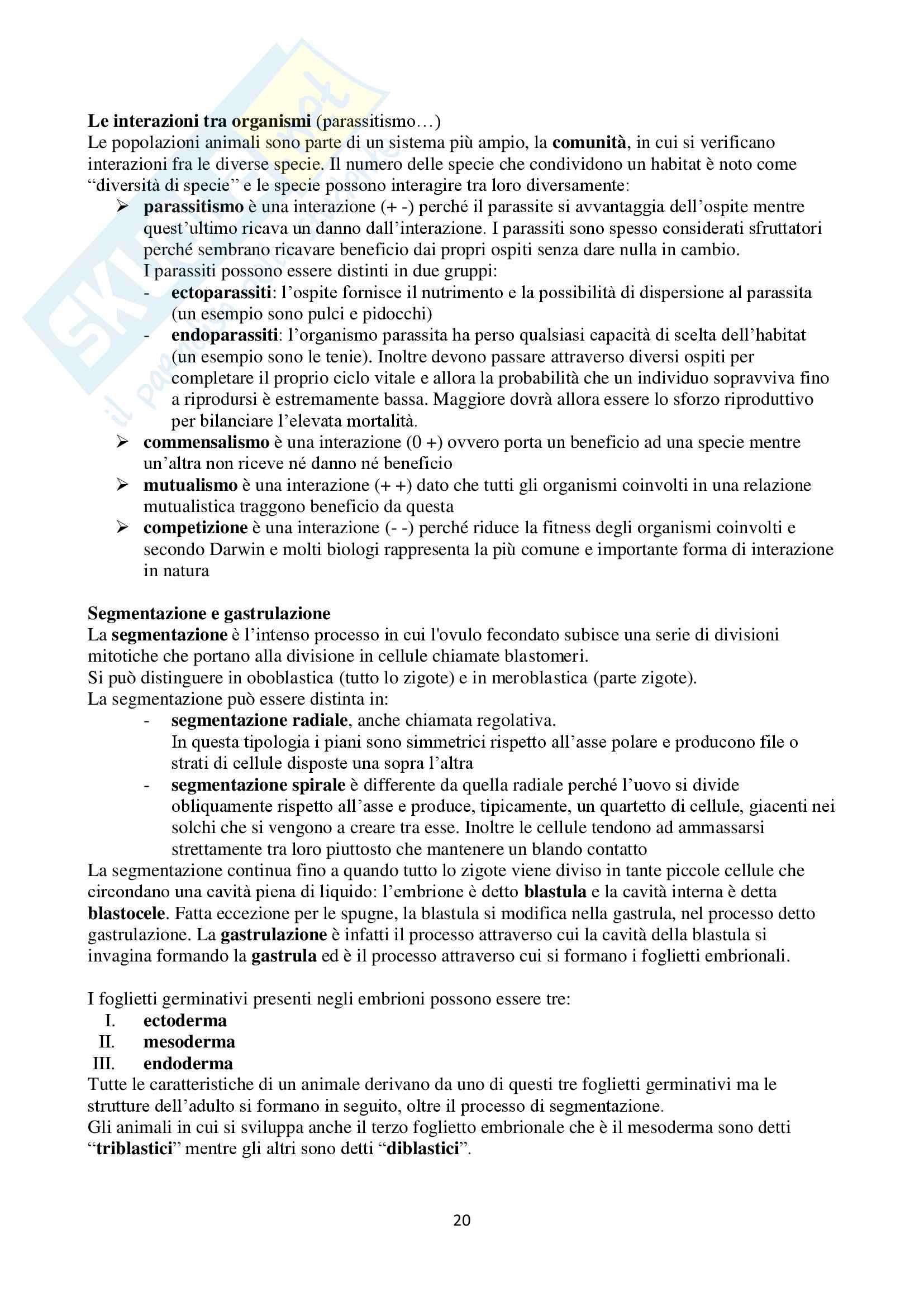Appunti di Zoologia per l'esame del corso di laurea triennale in Scienze Biologiche (Università Milano Bicocca) Pag. 21
