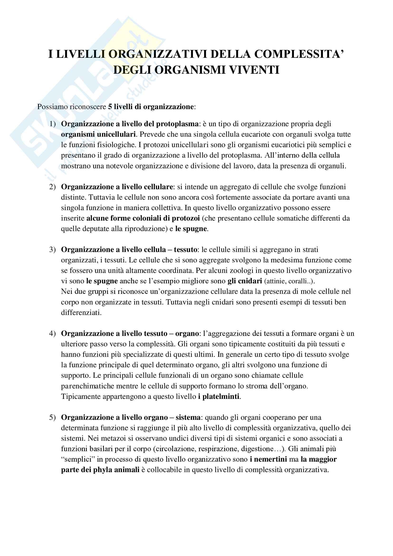 Appunti di Zoologia per l'esame del corso di laurea triennale in Scienze Biologiche (Università Milano Bicocca) Pag. 26