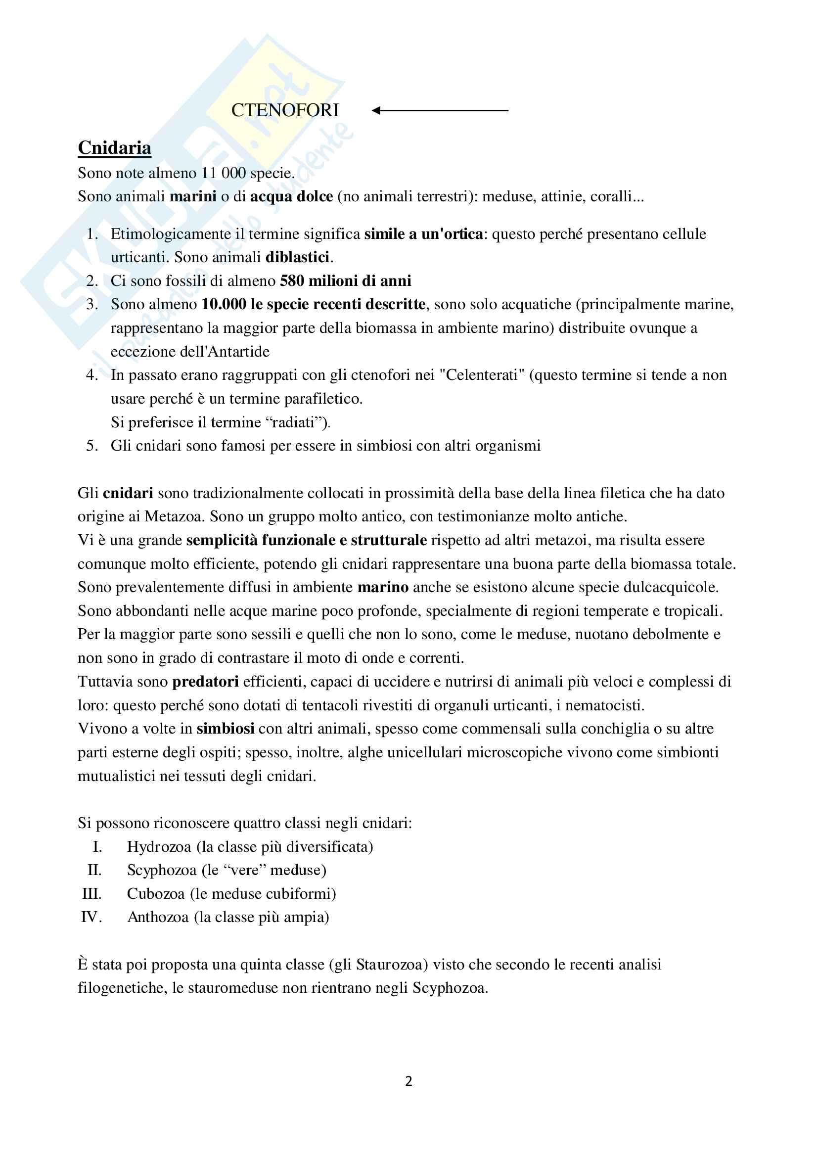 Appunti di Zoologia per l'esame del corso di laurea triennale in Scienze Biologiche (Università Milano Bicocca) Pag. 36