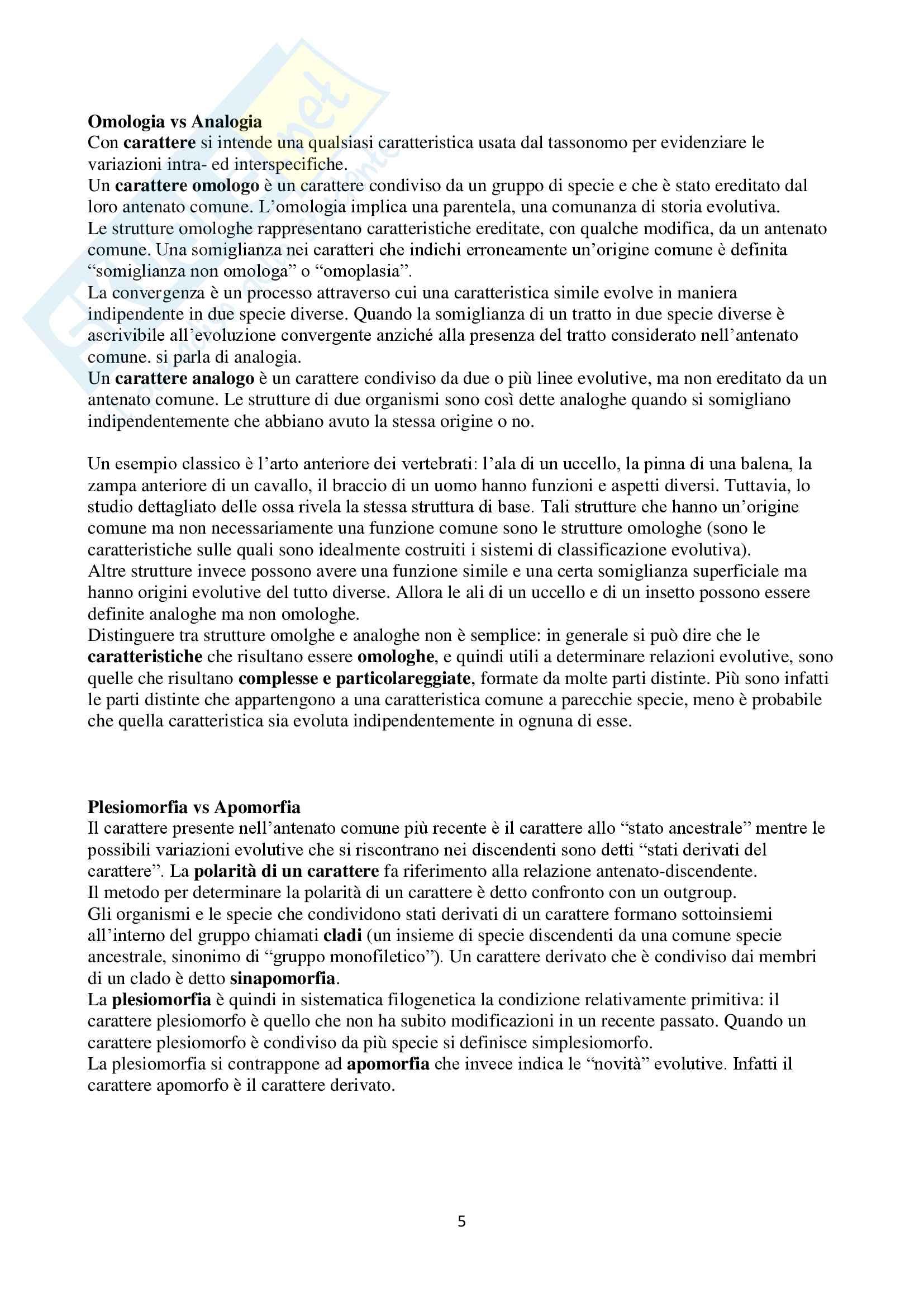 Appunti di Zoologia per l'esame del corso di laurea triennale in Scienze Biologiche (Università Milano Bicocca) Pag. 6