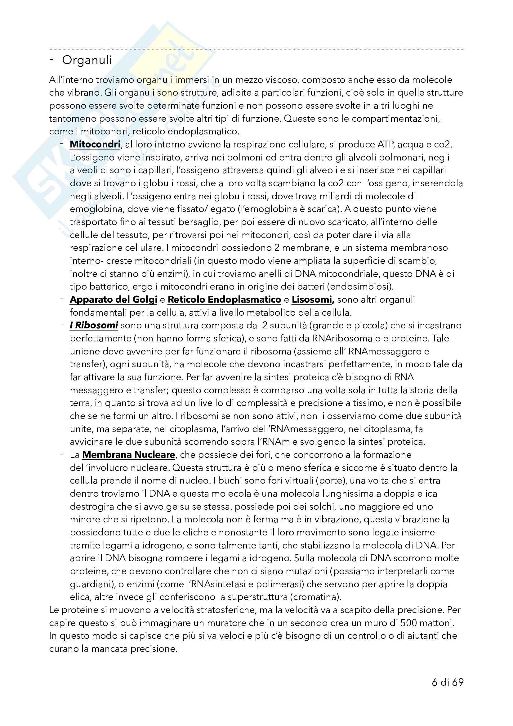 Genetica con laboratorio Pag. 6