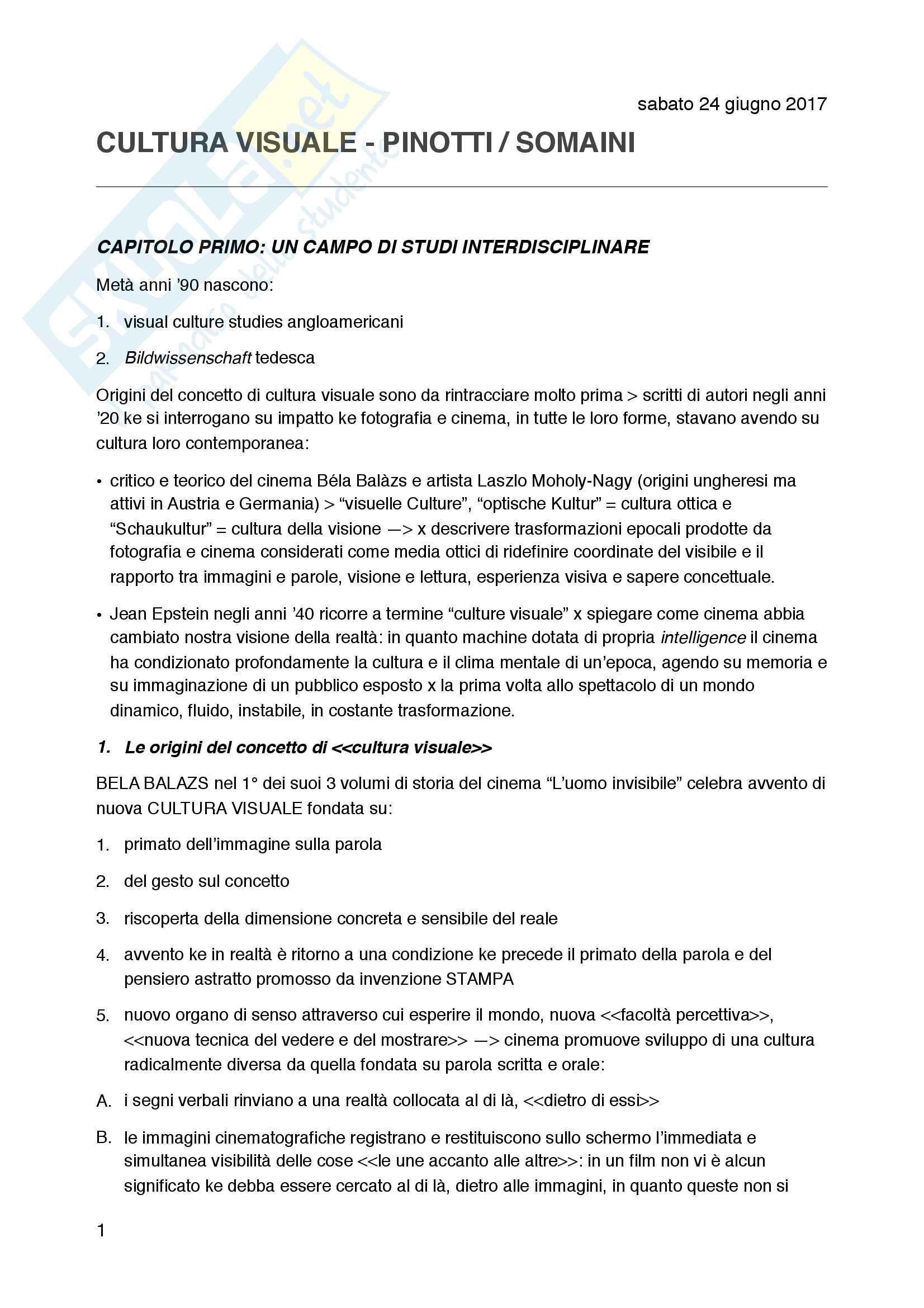 Riassunto esame Teoria della Rappresentazione e dell'Immagine, prof. Pinotti, Libro consigliato Cultura Visuale, Pinotti e Somaini