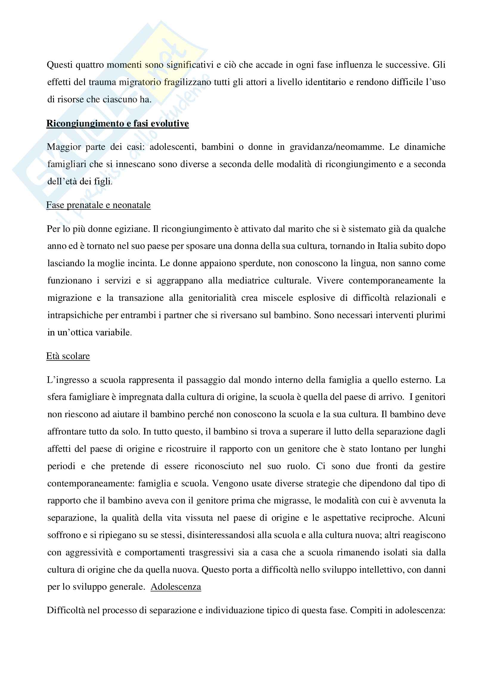 Riassunto esame Pedagogia generale e organizzazione scolastica, prof. Pastori, libro consigliato Terapia transculturale per famiglie migranti, Cattaneo Pag. 11