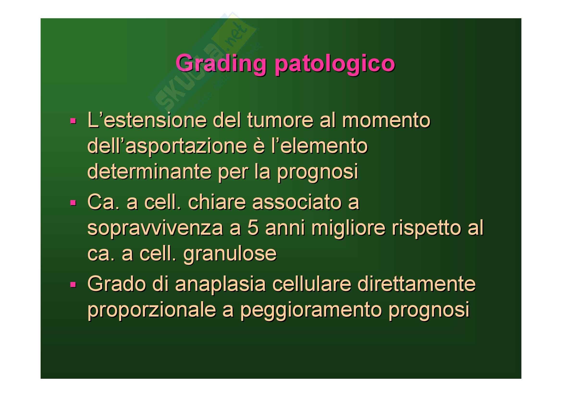 Malattie del rene e delle vie urinarie - tumori del rene Pag. 26