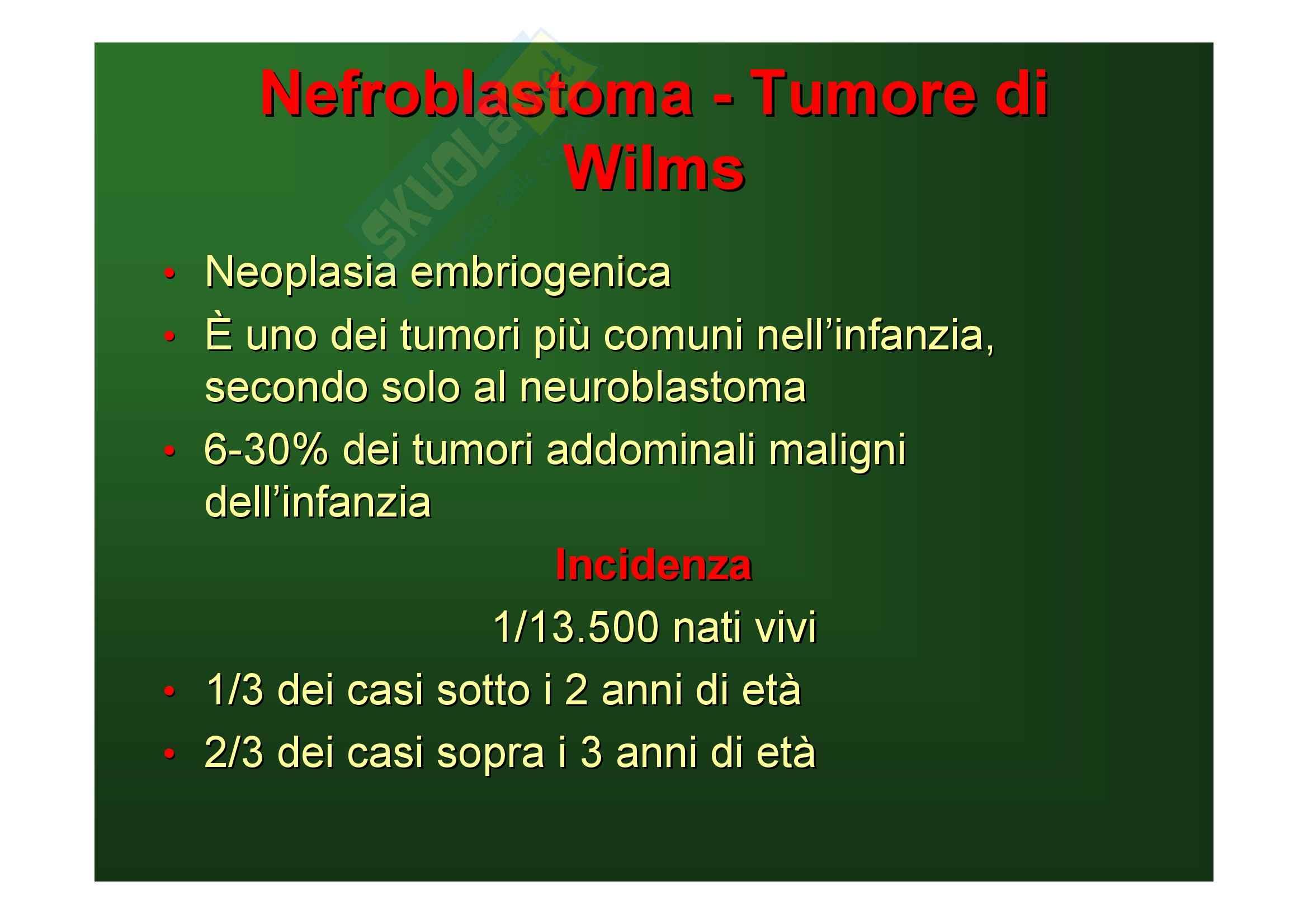 Malattie del rene e delle vie urinarie - tumori del rene Pag. 46