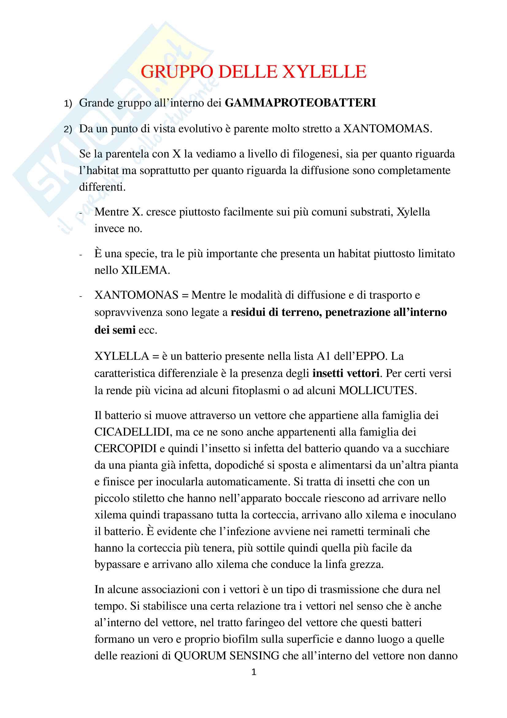 Parte speciale Batteriologia Xylella Pseudomonas e Xanthomonas