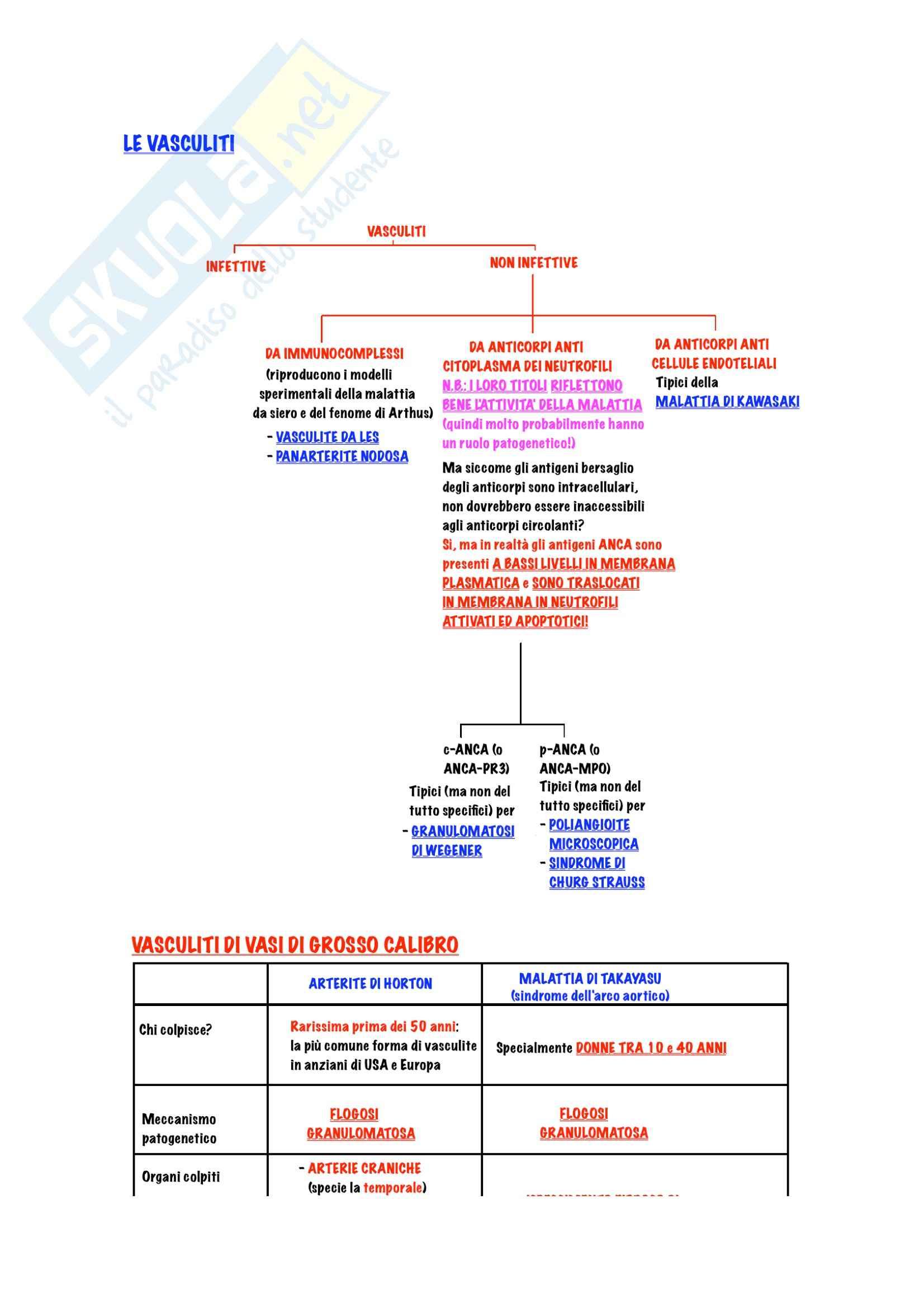 Reumatologia - Vasculiti