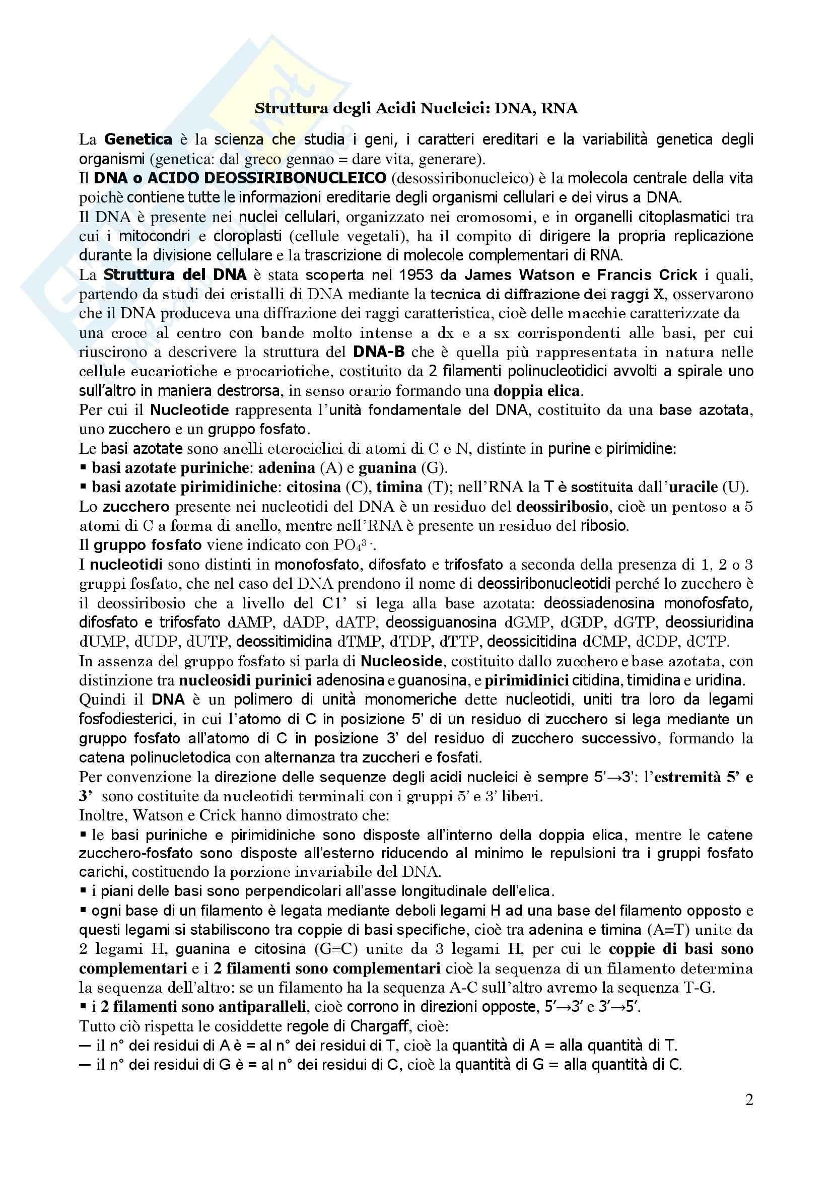 Genetica Umana - Appunti Pag. 2
