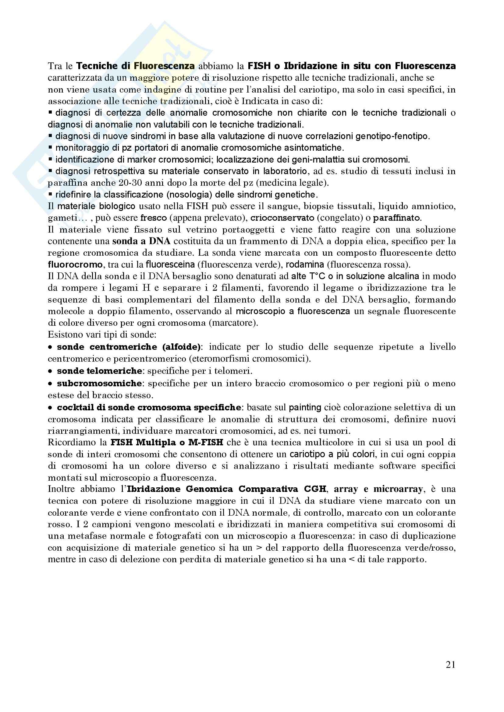 Genetica Umana - Appunti Pag. 21