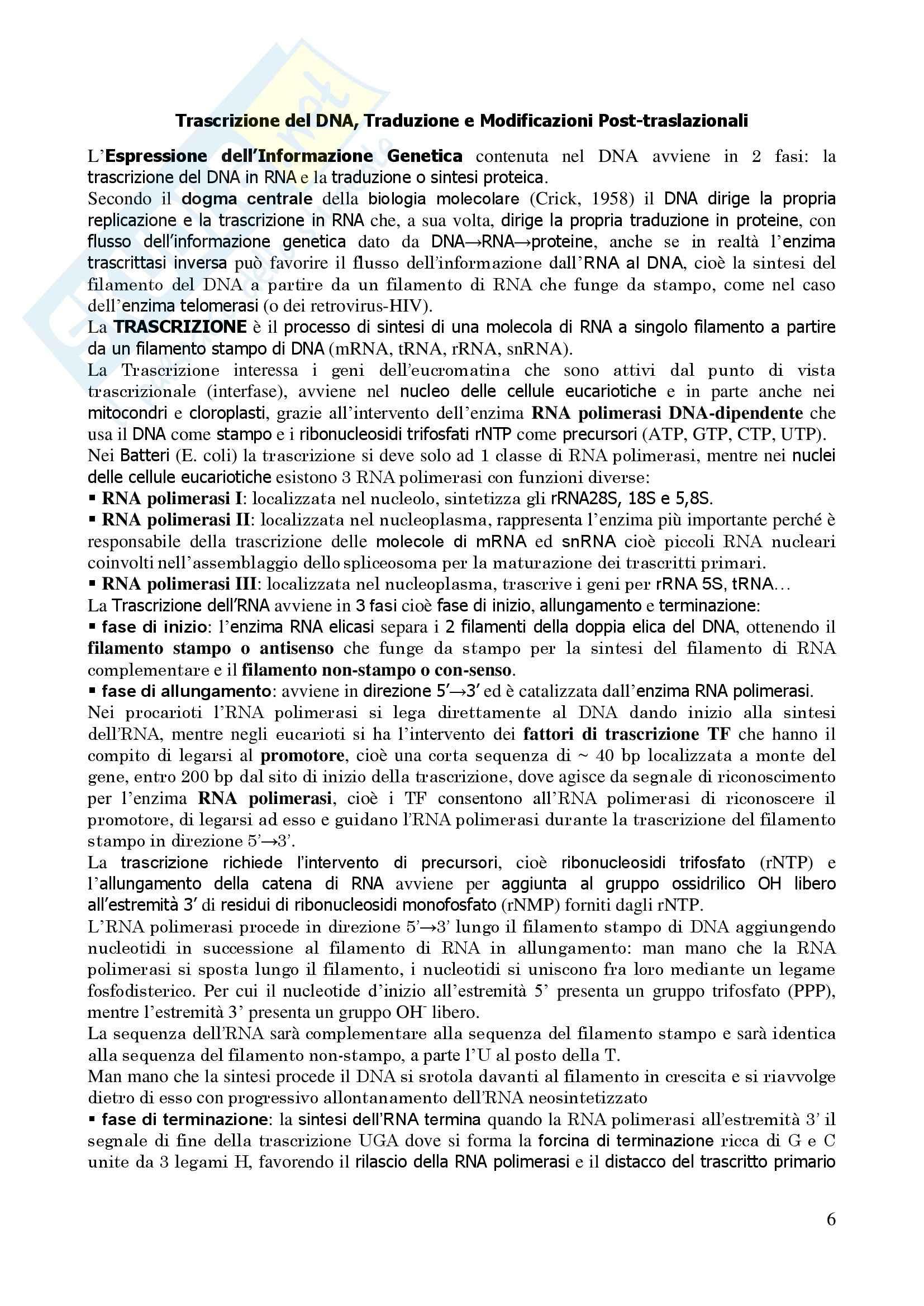 Genetica Umana - Appunti Pag. 6