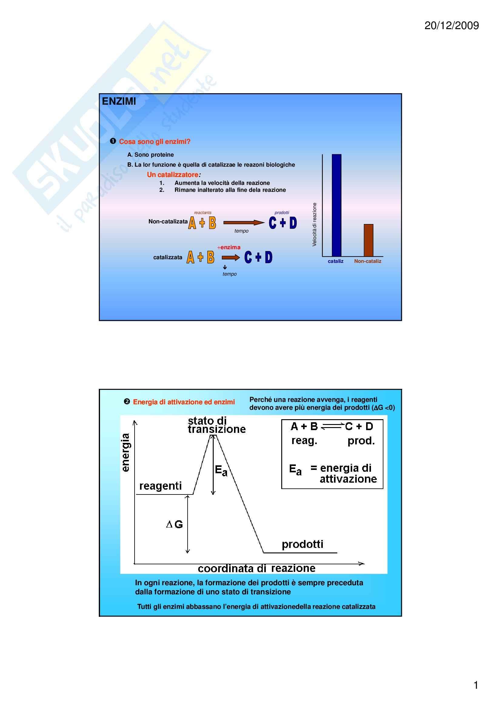 Biochimica I – Enzimi e vitamine – Slides