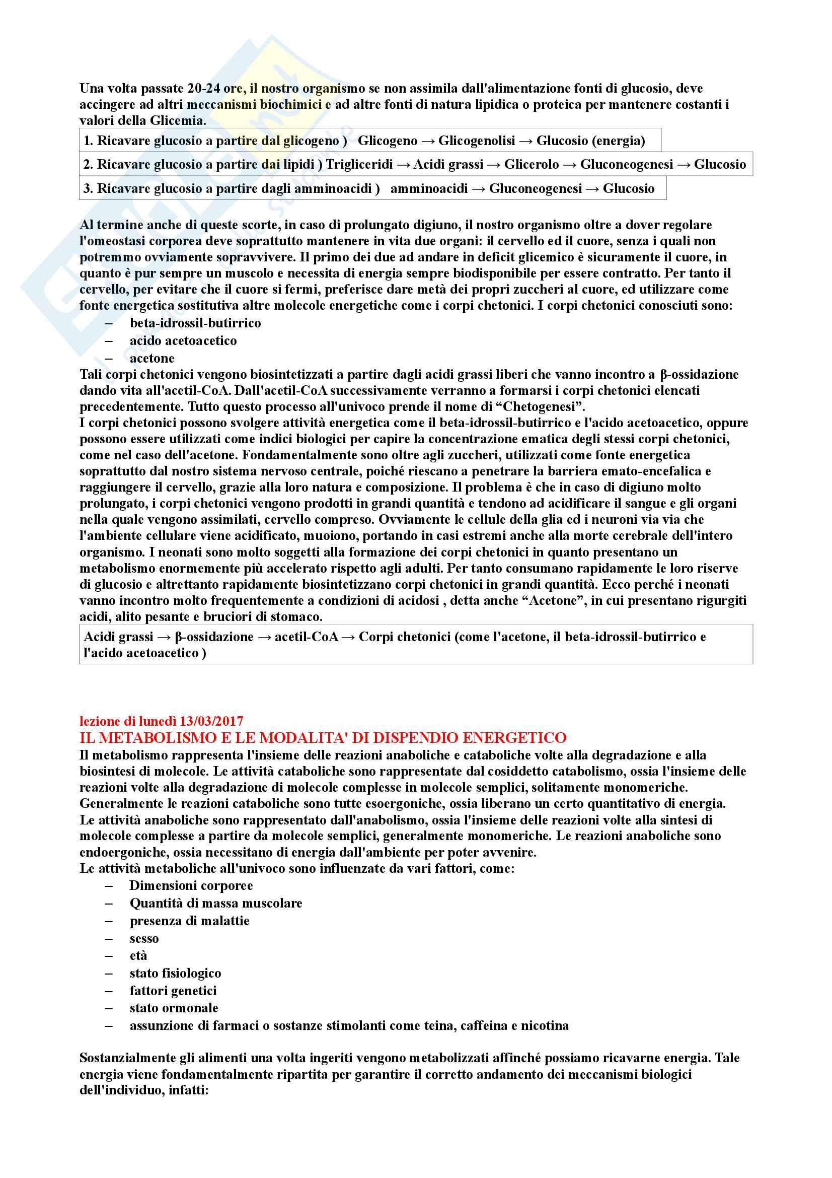 Riassunto di Biochimica degli alimenti Pag. 2
