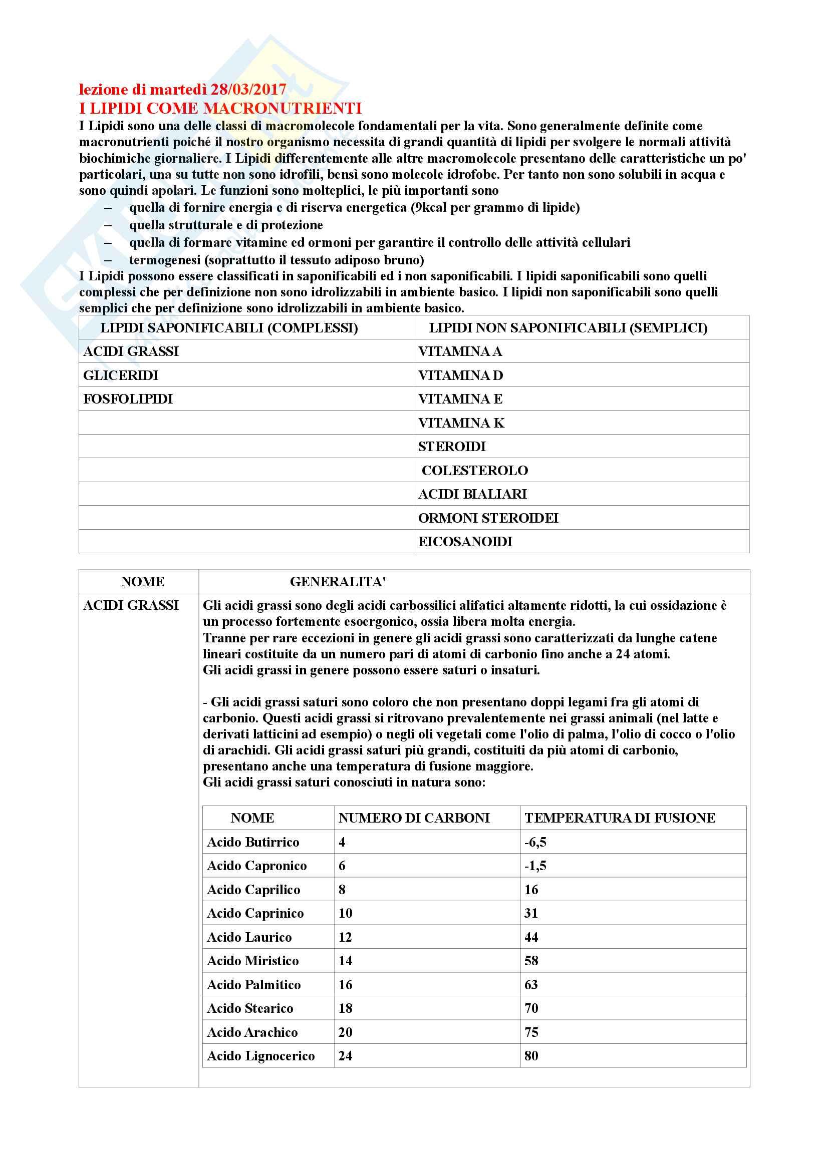 Riassunto di Biochimica degli alimenti Pag. 46